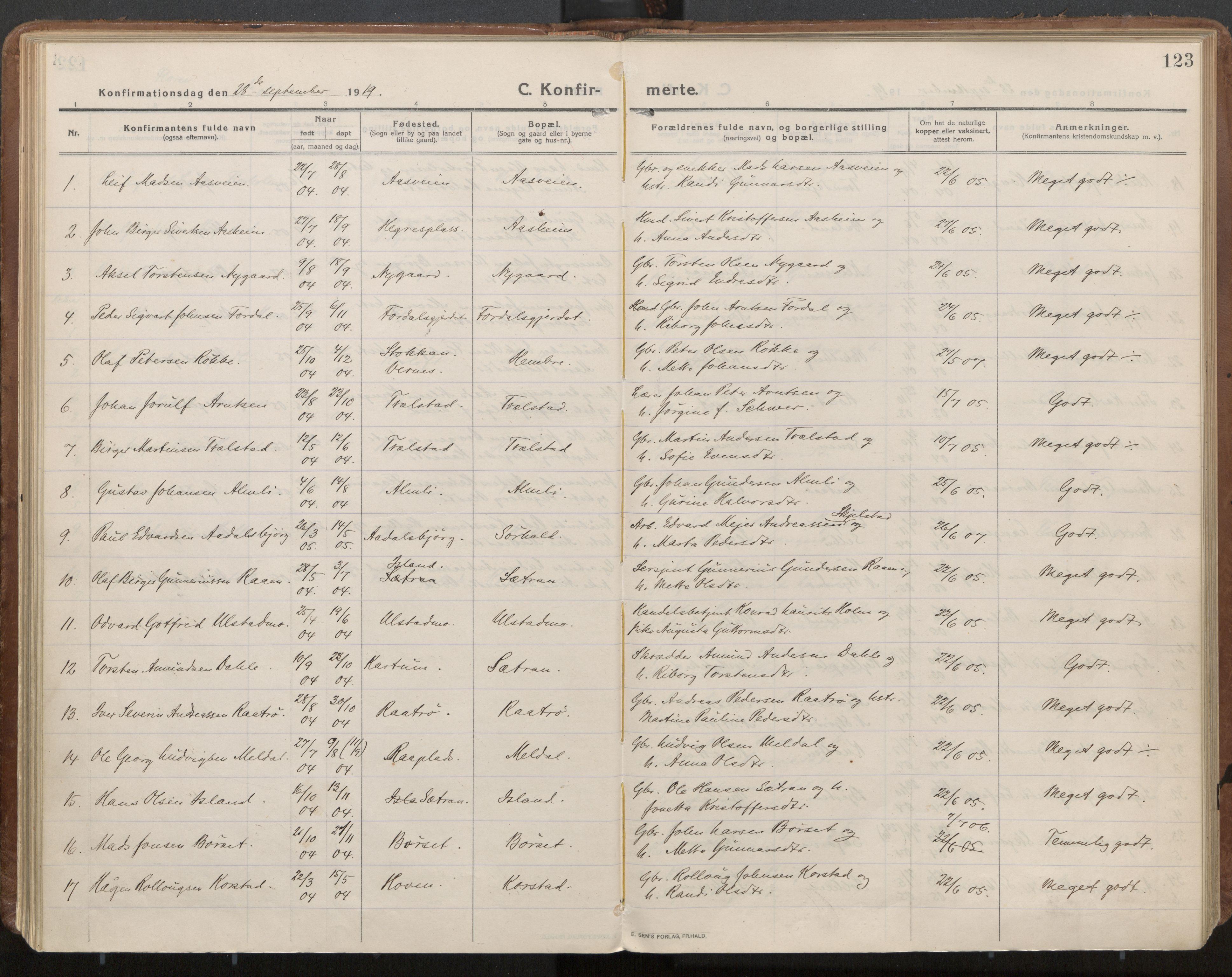 SAT, Ministerialprotokoller, klokkerbøker og fødselsregistre - Nord-Trøndelag, 703/L0037: Parish register (official) no. 703A10, 1915-1932, p. 123