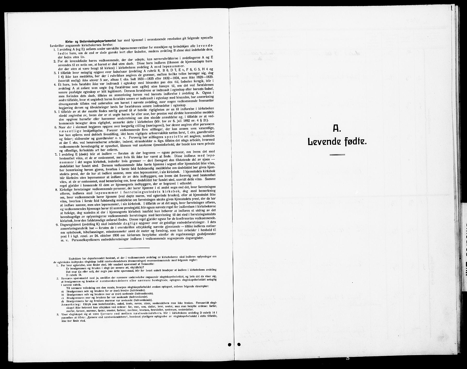 SAT, Ministerialprotokoller, klokkerbøker og fødselsregistre - Sør-Trøndelag, 690/L1052: Parish register (copy) no. 690C02, 1907-1929