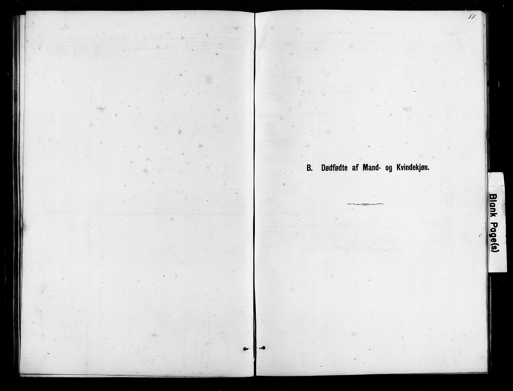SAK, Herefoss sokneprestkontor, F/Fb/Fbb/L0002: Parish register (copy) no. B 2, 1879-1894, p. 51