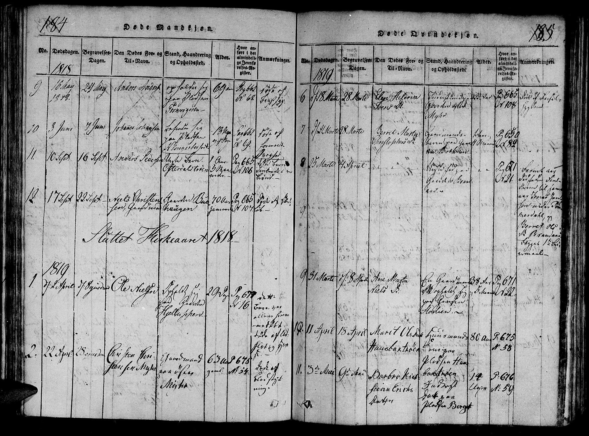SAT, Ministerialprotokoller, klokkerbøker og fødselsregistre - Nord-Trøndelag, 701/L0005: Parish register (official) no. 701A05 /1, 1816-1825, p. 184-185