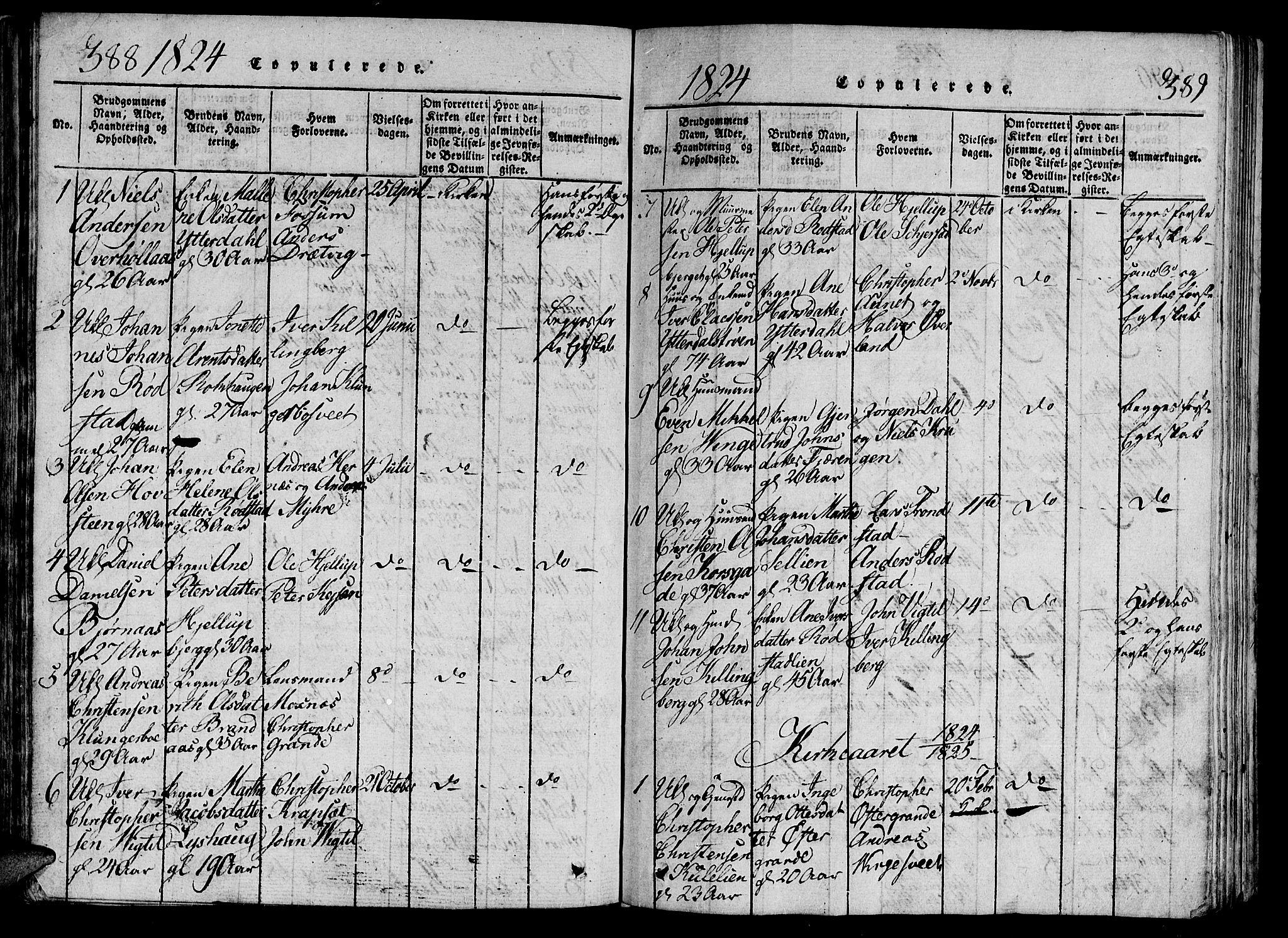 SAT, Ministerialprotokoller, klokkerbøker og fødselsregistre - Nord-Trøndelag, 701/L0005: Parish register (official) no. 701A05 /1, 1816-1825, p. 388-389