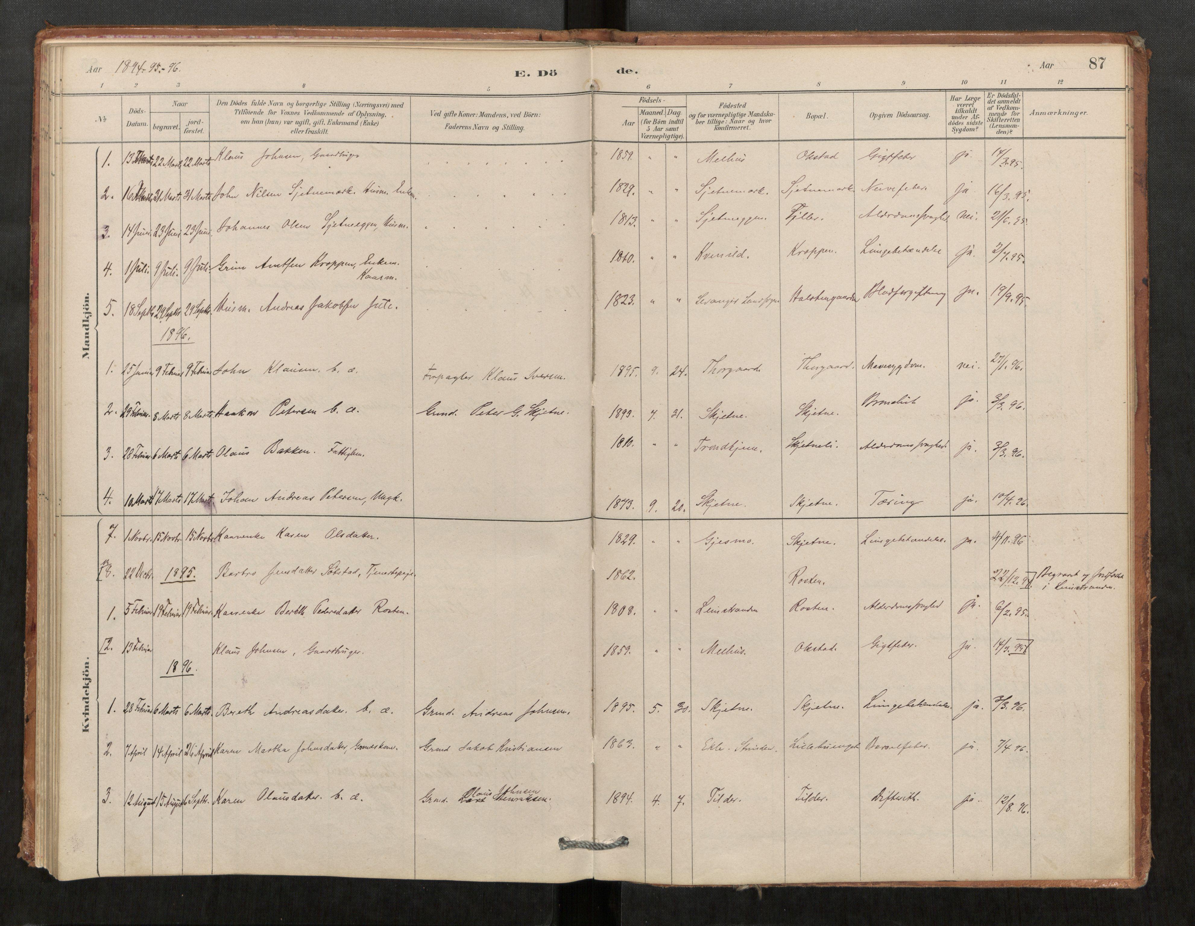 SAT, Klæbu sokneprestkontor, Parish register (official) no. 1, 1880-1900, p. 87