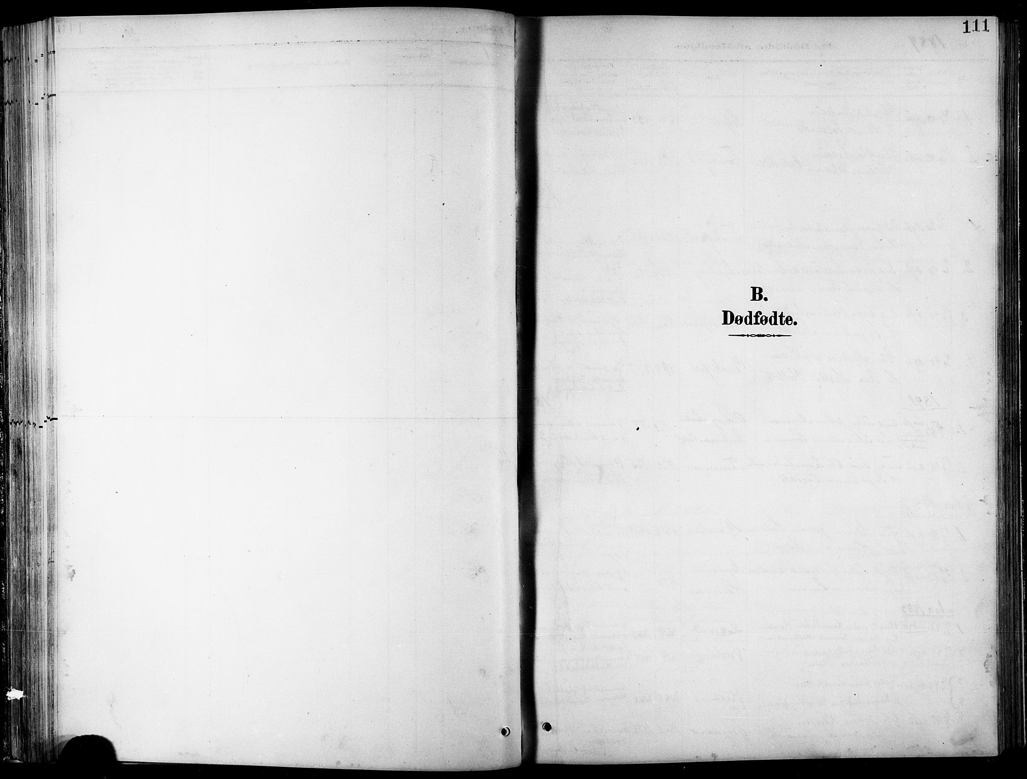 SATØ, Balsfjord sokneprestembete, Parish register (copy) no. 8, 1890-1906, p. 111