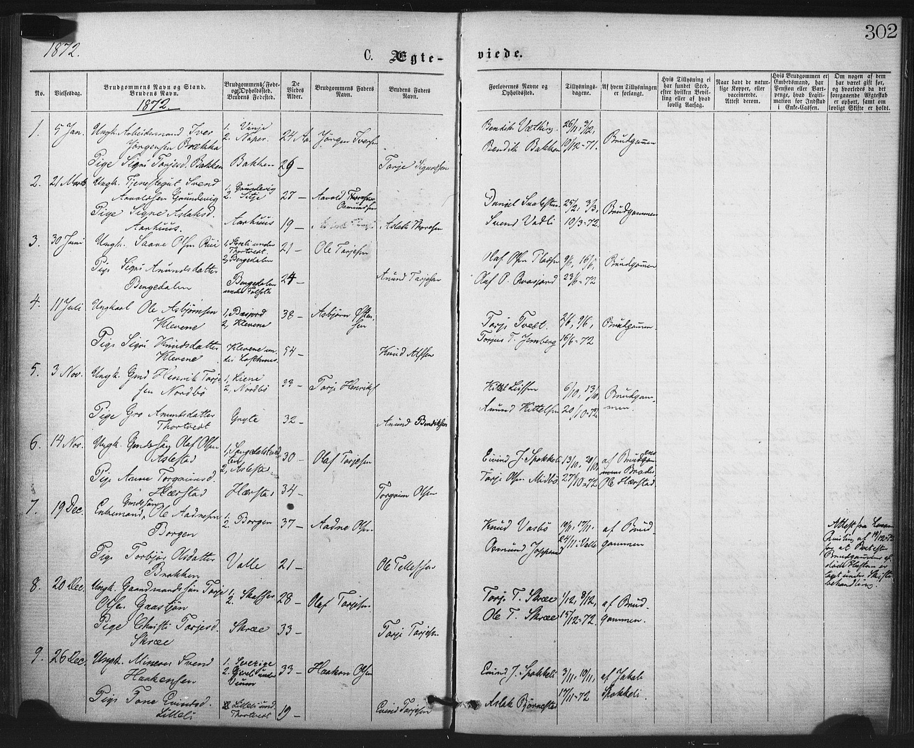 SAKO, Fyresdal kirkebøker, F/Fa/L0006: Parish register (official) no. I 6, 1872-1886, p. 302
