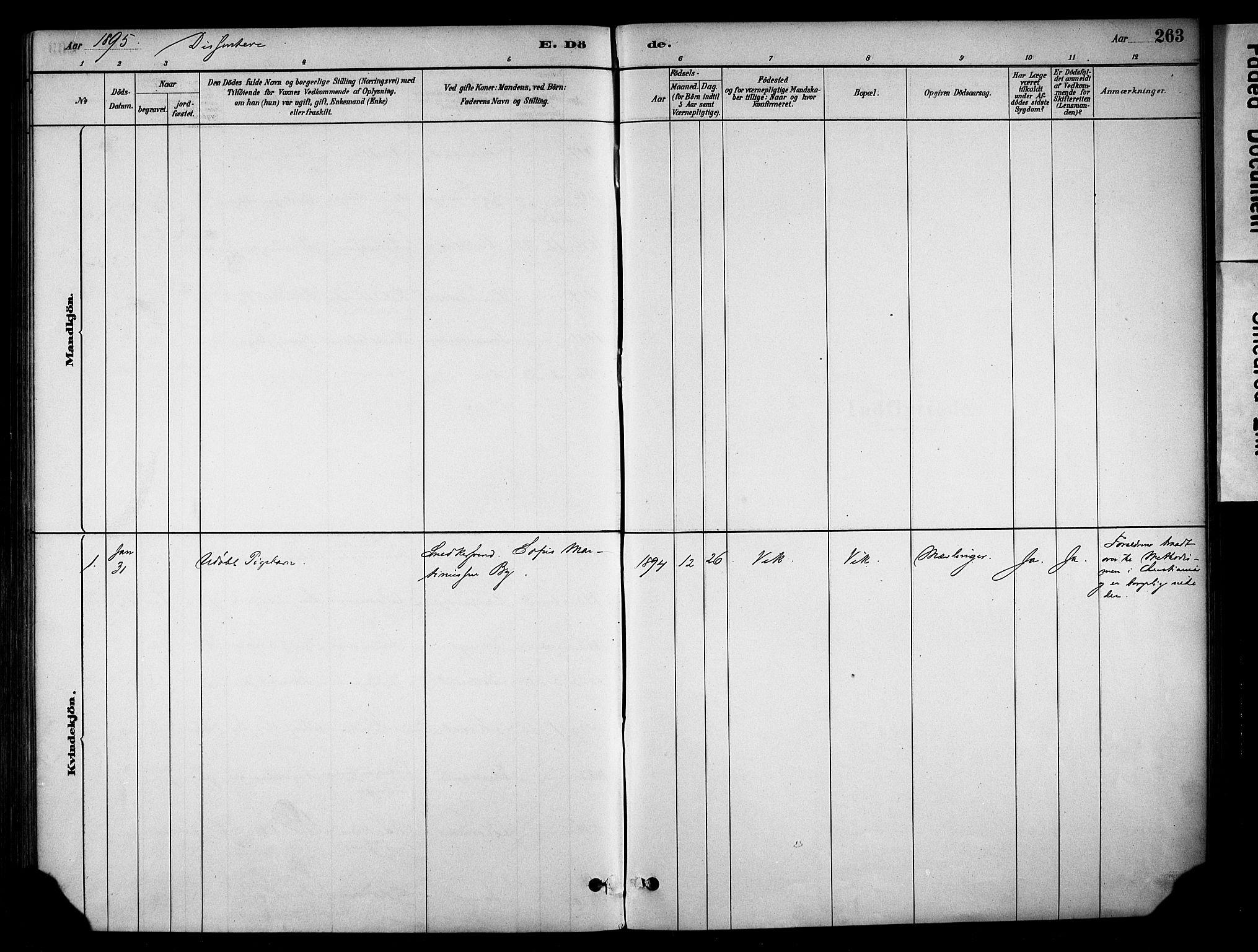 SAH, Stange prestekontor, K/L0018: Parish register (official) no. 18, 1880-1896, p. 263