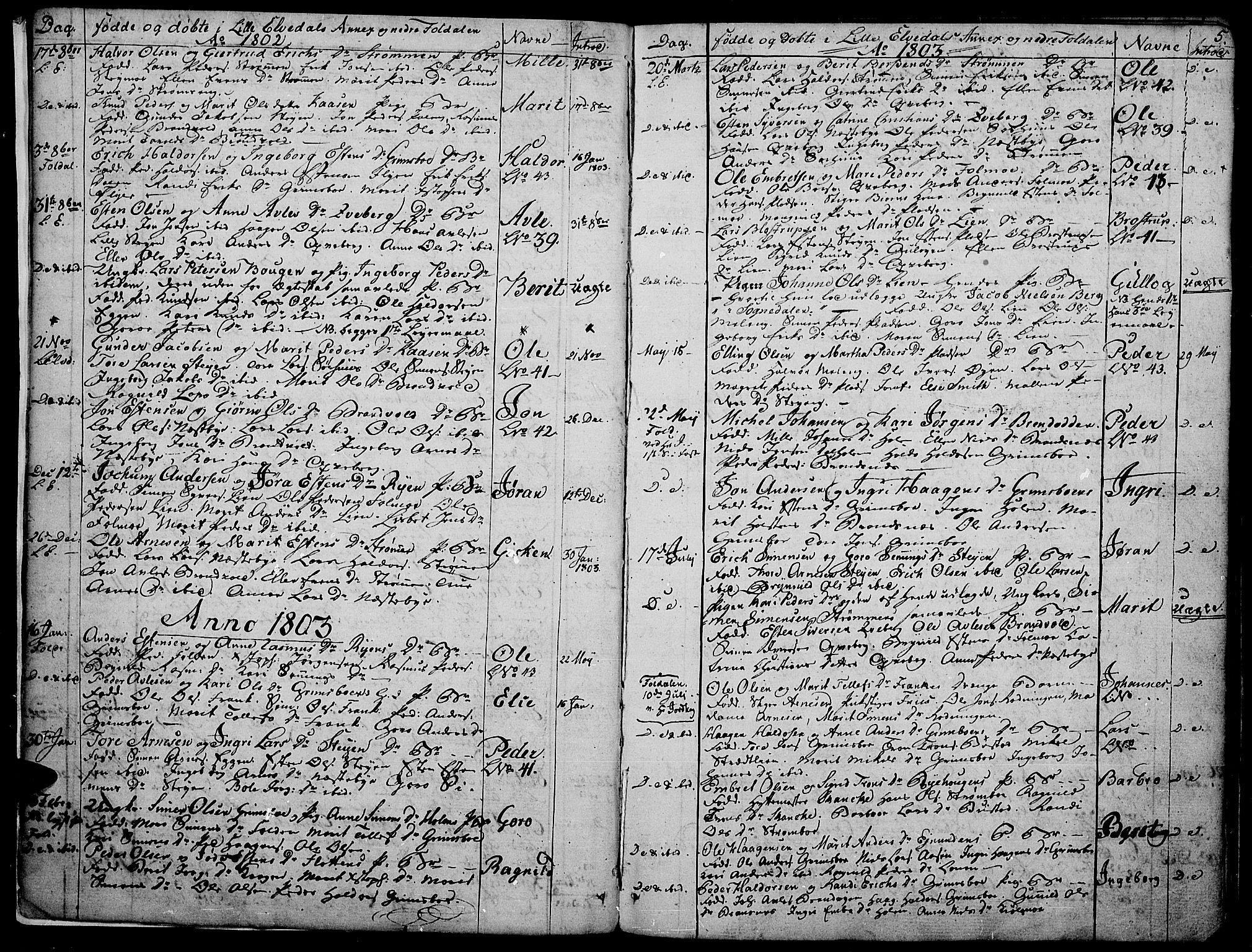 SAH, Tynset prestekontor, Parish register (official) no. 16, 1801-1814, p. 5