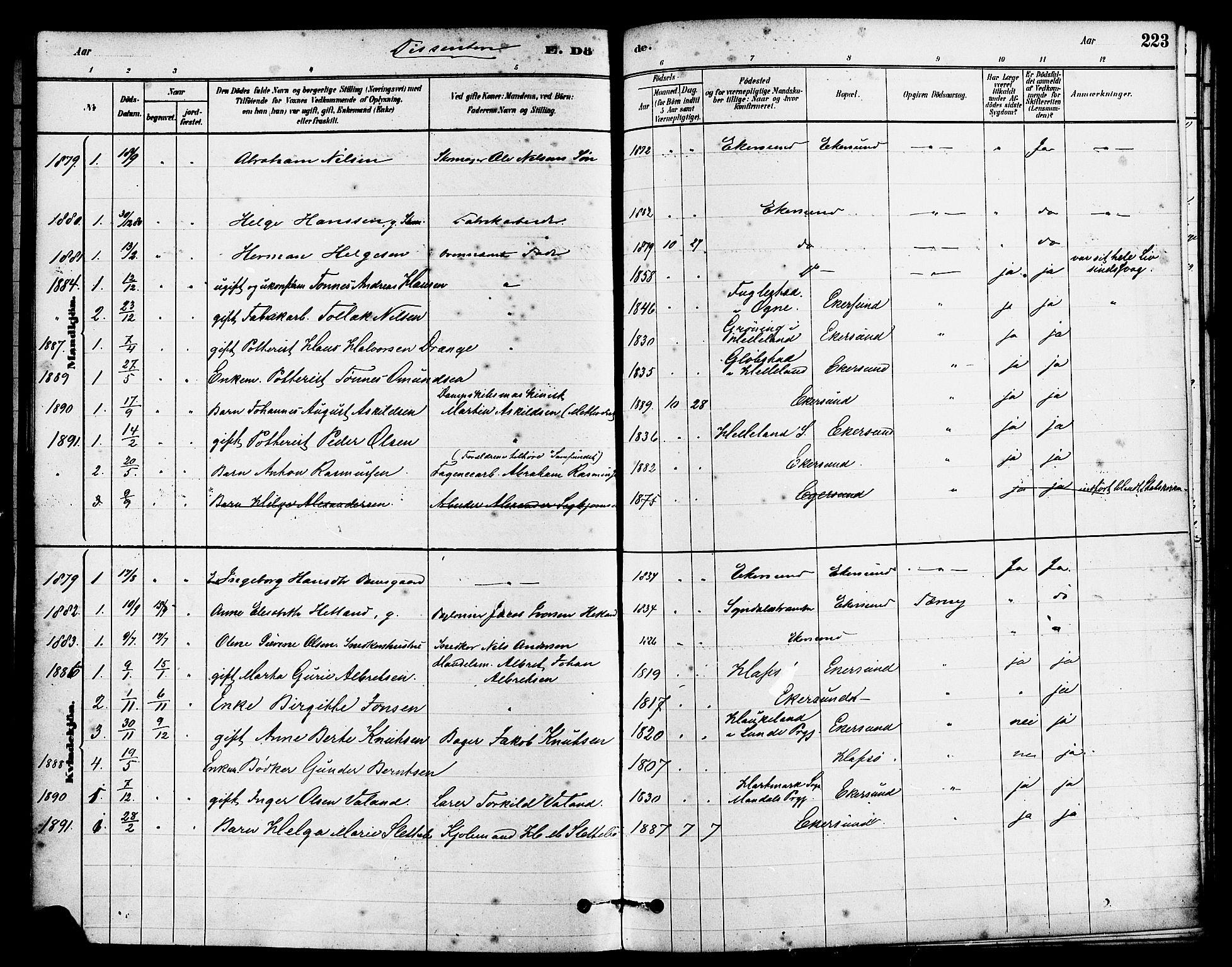 SAST, Egersund sokneprestkontor, S08/L0015: Parish register (official) no. A 15, 1879-1892, p. 223