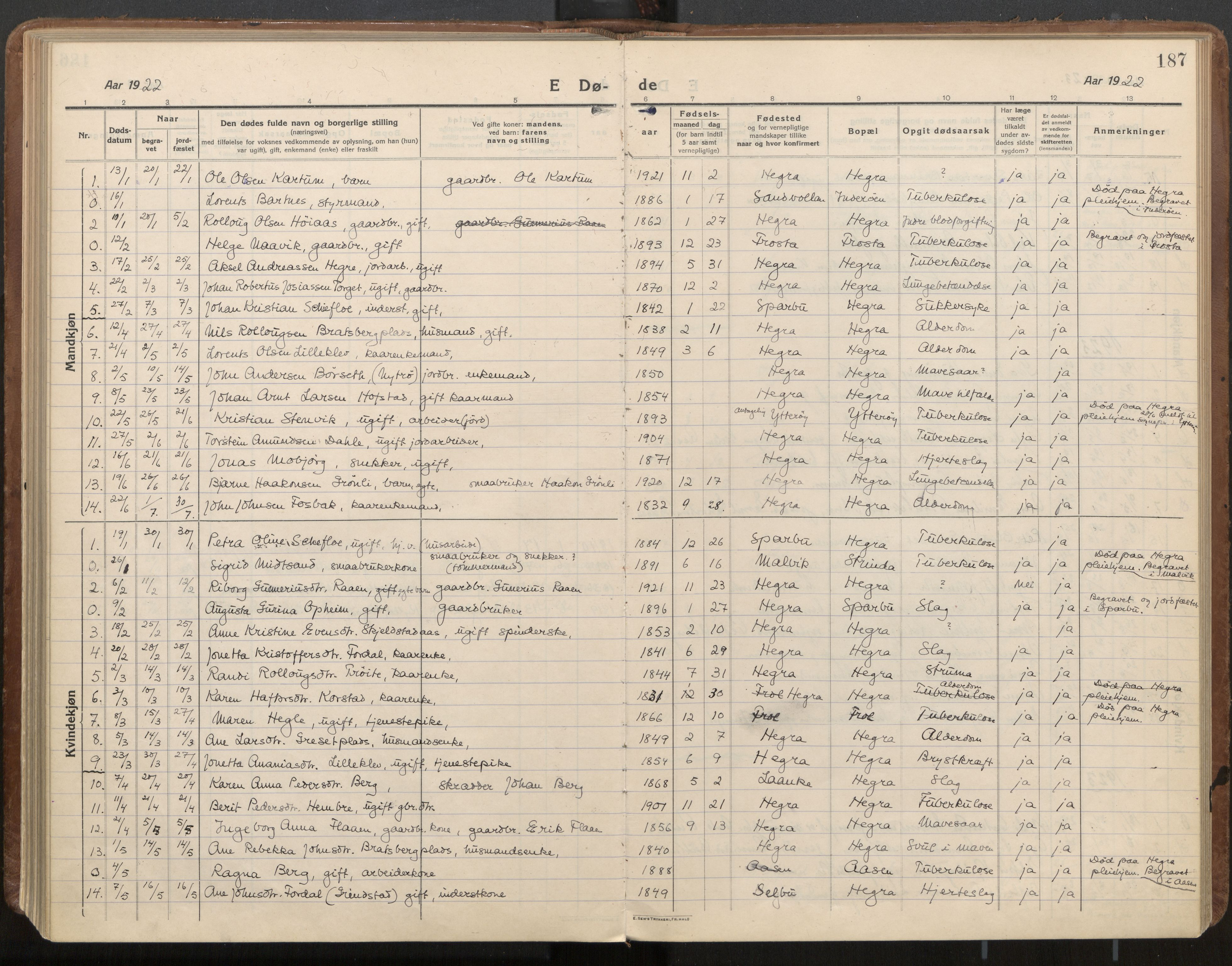 SAT, Ministerialprotokoller, klokkerbøker og fødselsregistre - Nord-Trøndelag, 703/L0037: Parish register (official) no. 703A10, 1915-1932, p. 187