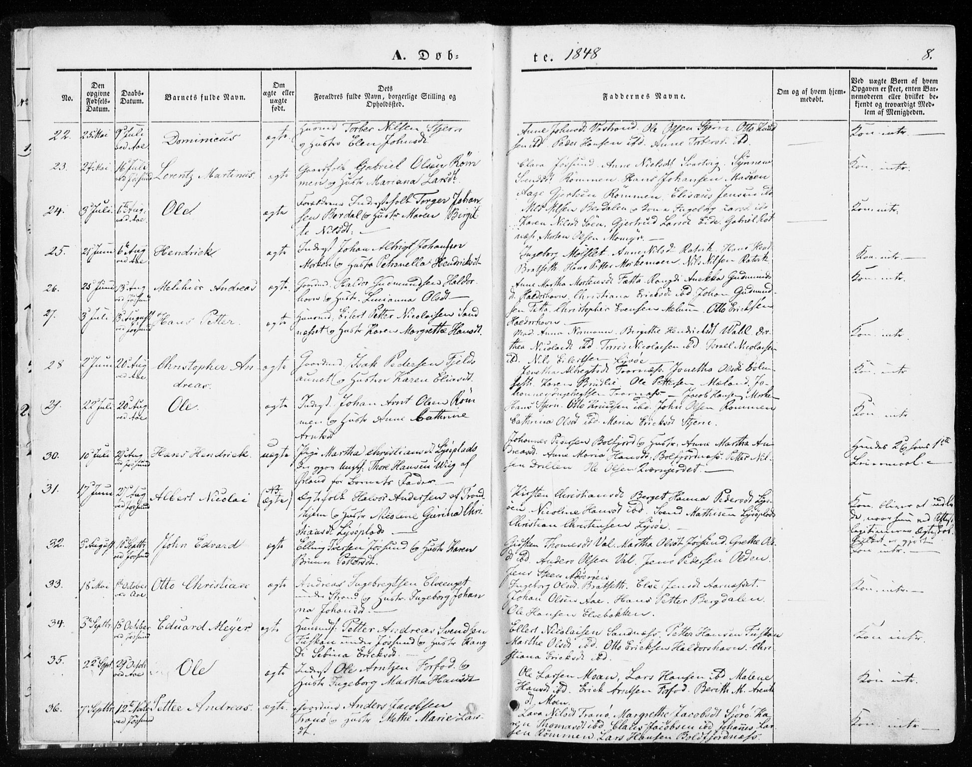 SAT, Ministerialprotokoller, klokkerbøker og fødselsregistre - Sør-Trøndelag, 655/L0677: Parish register (official) no. 655A06, 1847-1860, p. 8