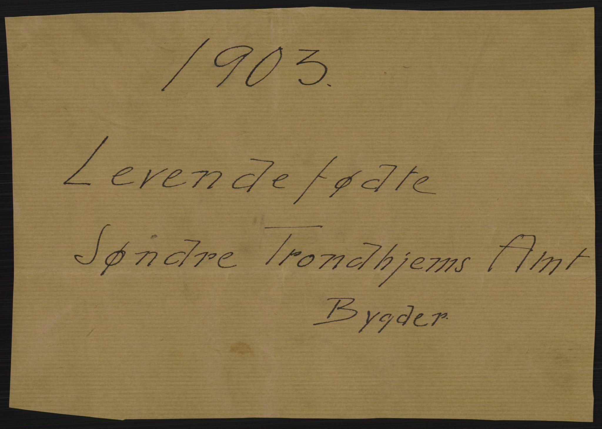 RA, Statistisk sentralbyrå, Sosiodemografiske emner, Befolkning, D/Df/Dfa/Dfaa/L0017: Søndre Trondhjems amt: Fødte, gifte, døde., 1903, p. 1