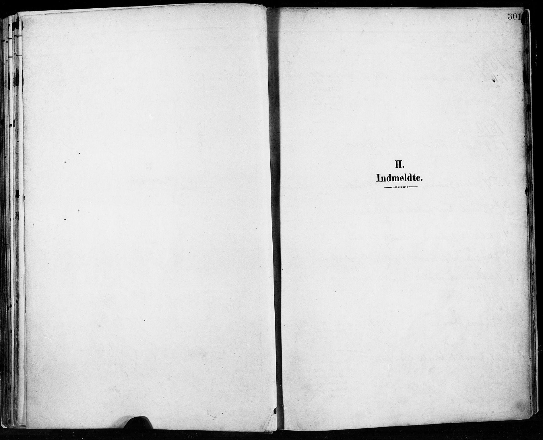 SAST, Høyland sokneprestkontor, 30BA/L0013: Parish register (official) no. A 13.2, 1889-1898, p. 301