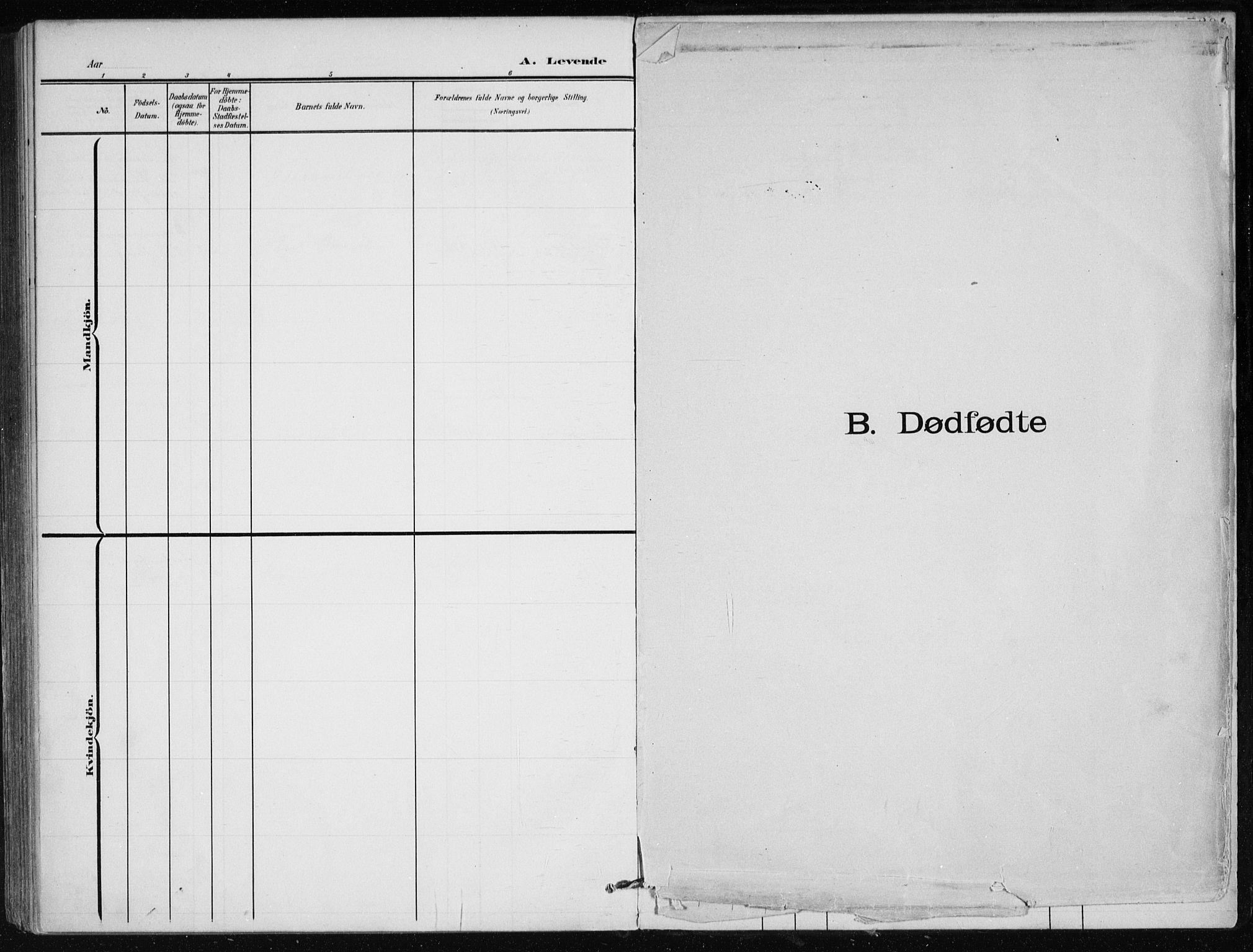 SAT, Ministerialprotokoller, klokkerbøker og fødselsregistre - Nordland, 866/L0941: Parish register (official) no. 866A04, 1901-1917
