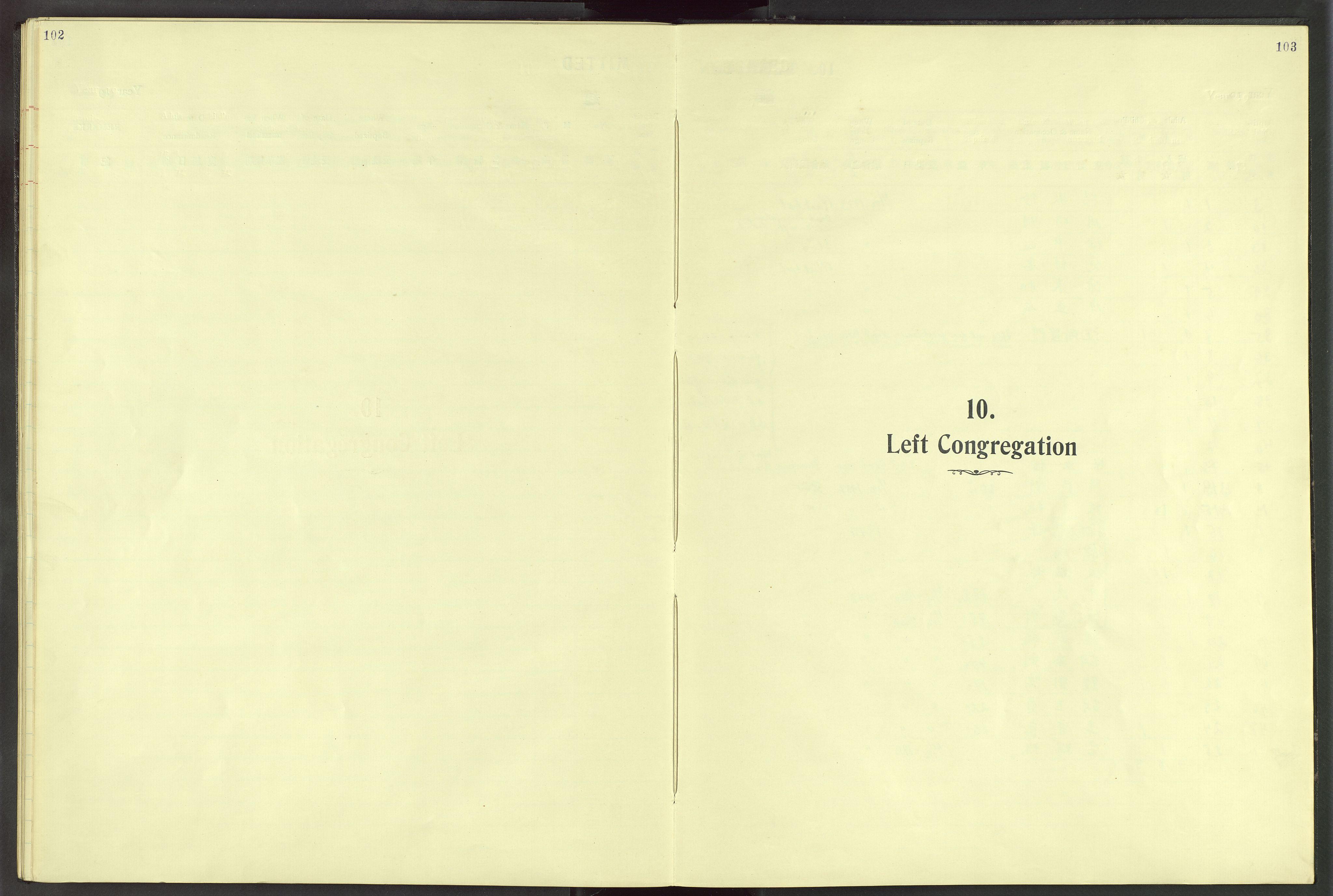 VID, Det Norske Misjonsselskap - utland - Kina (Hunan), Dm/L0028: Parish register (official) no. 66, 1914-1932, p. 102-103