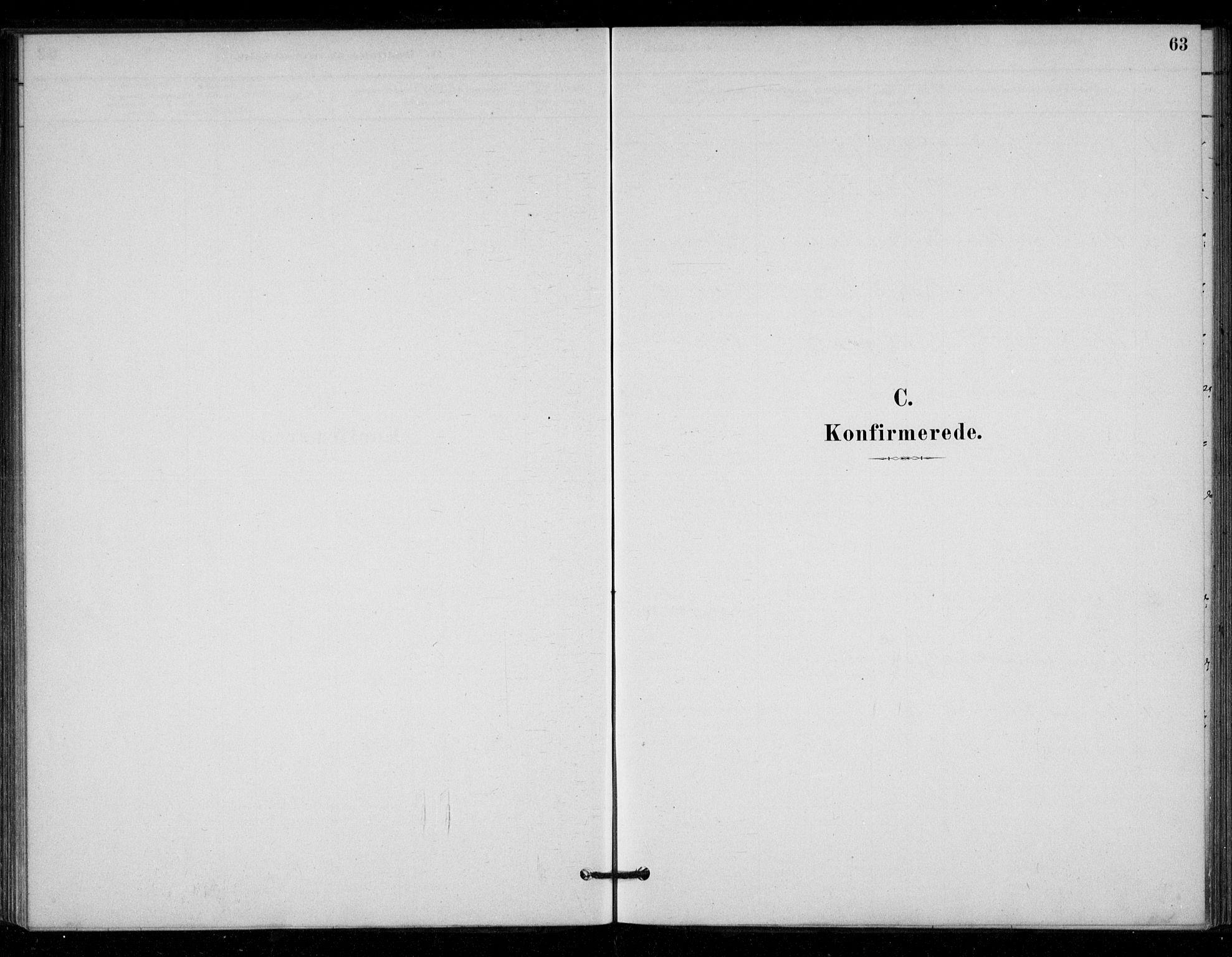 SAT, Ministerialprotokoller, klokkerbøker og fødselsregistre - Sør-Trøndelag, 670/L0836: Parish register (official) no. 670A01, 1879-1904, p. 63