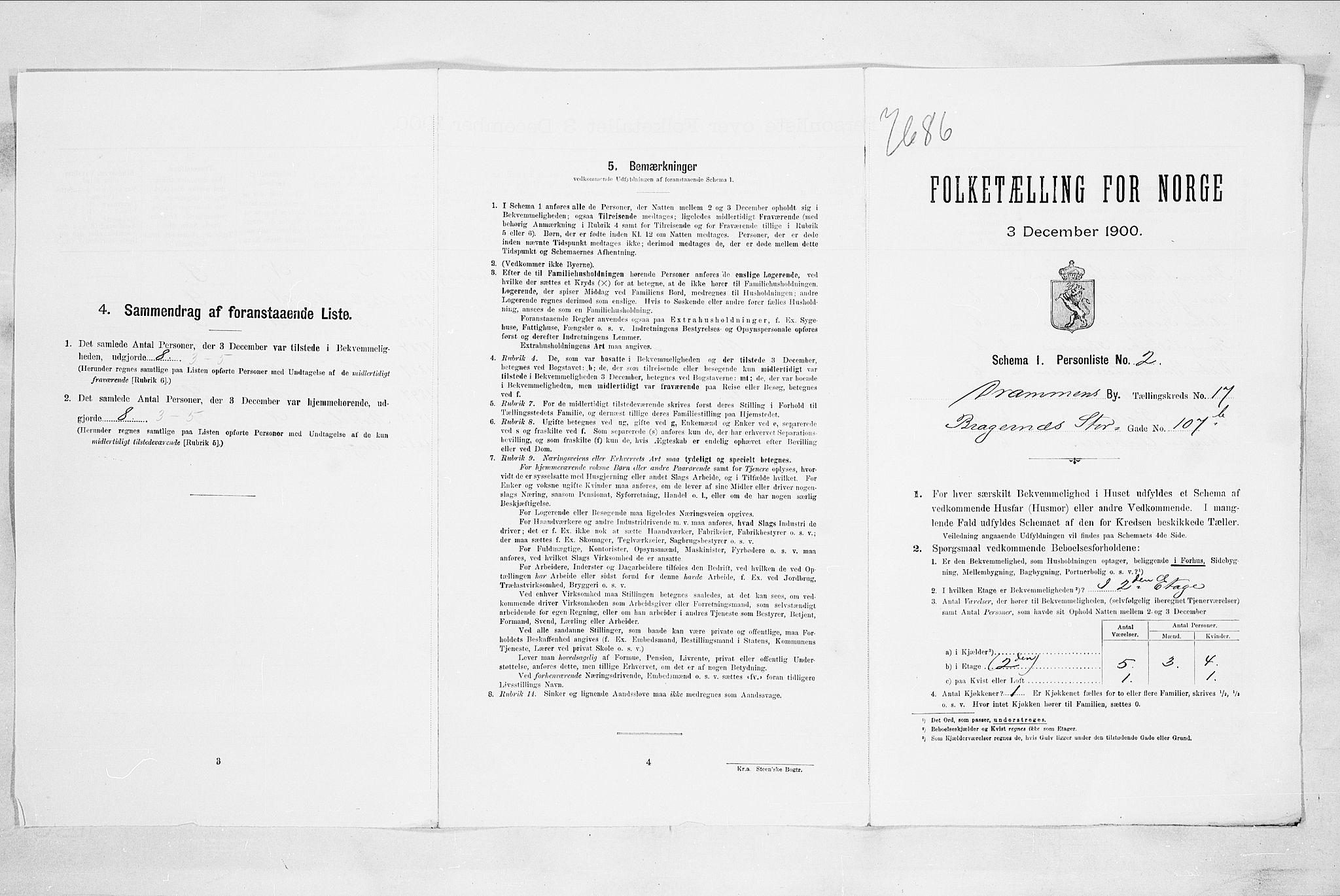 RA, 1900 census for Drammen, 1900, p. 3101