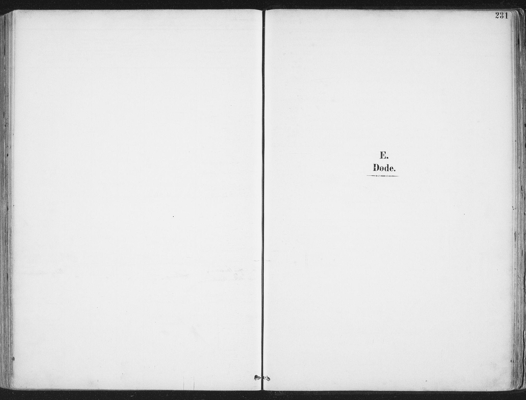 SAT, Ministerialprotokoller, klokkerbøker og fødselsregistre - Nordland, 888/L1246: Parish register (official) no. 888A12, 1891-1903, p. 231