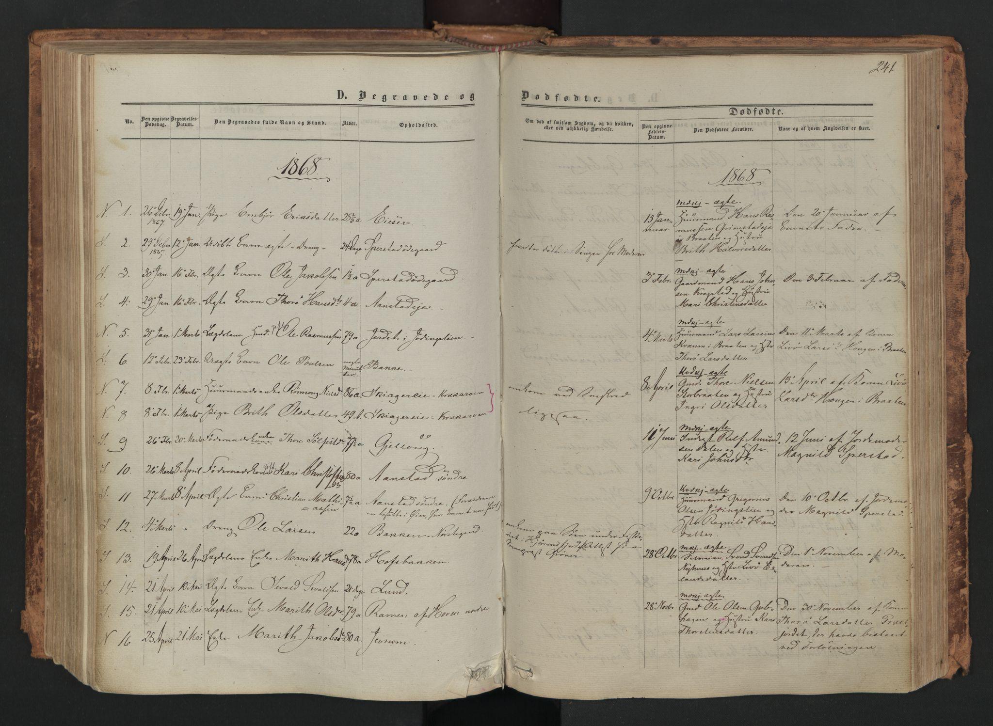 SAH, Skjåk prestekontor, Parish register (official) no. 1, 1863-1879, p. 241