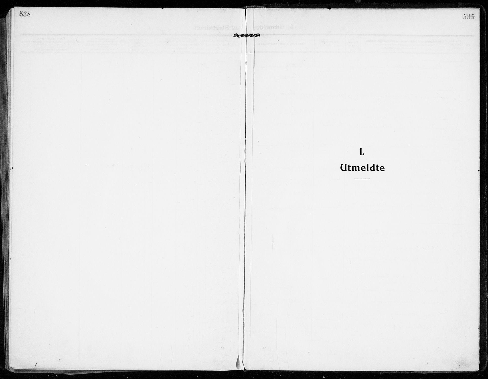 SAKO, Strømsgodset kirkebøker, F/Fa/L0002: Parish register (official) no. 2, 1910-1920, p. 538-539