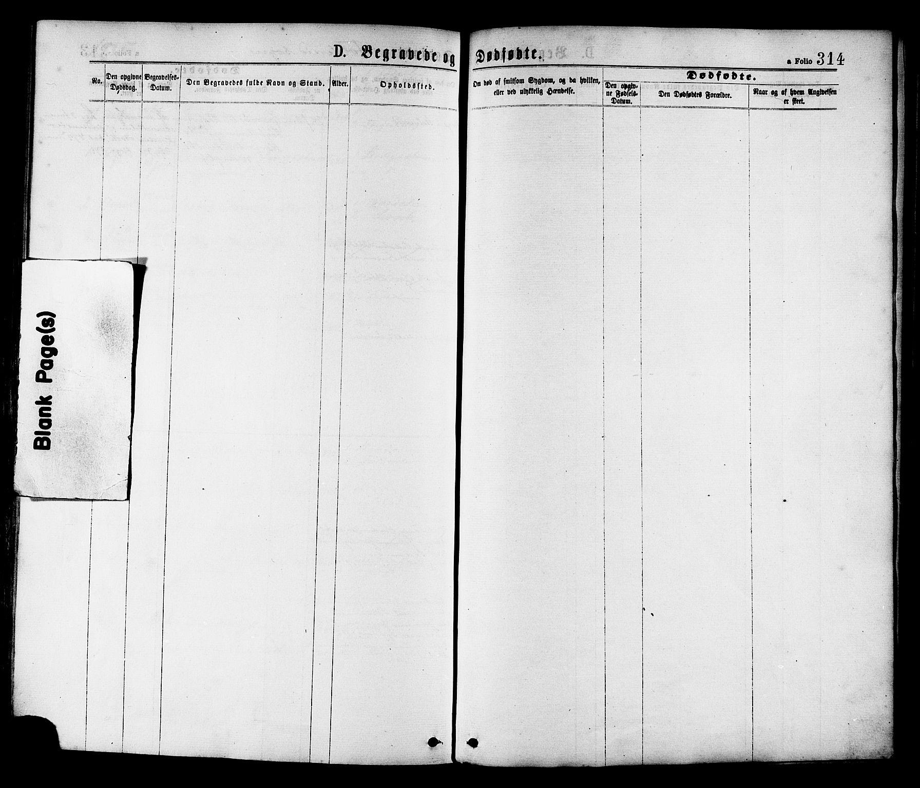 SAT, Ministerialprotokoller, klokkerbøker og fødselsregistre - Nord-Trøndelag, 780/L0642: Parish register (official) no. 780A07 /2, 1878-1885, p. 314