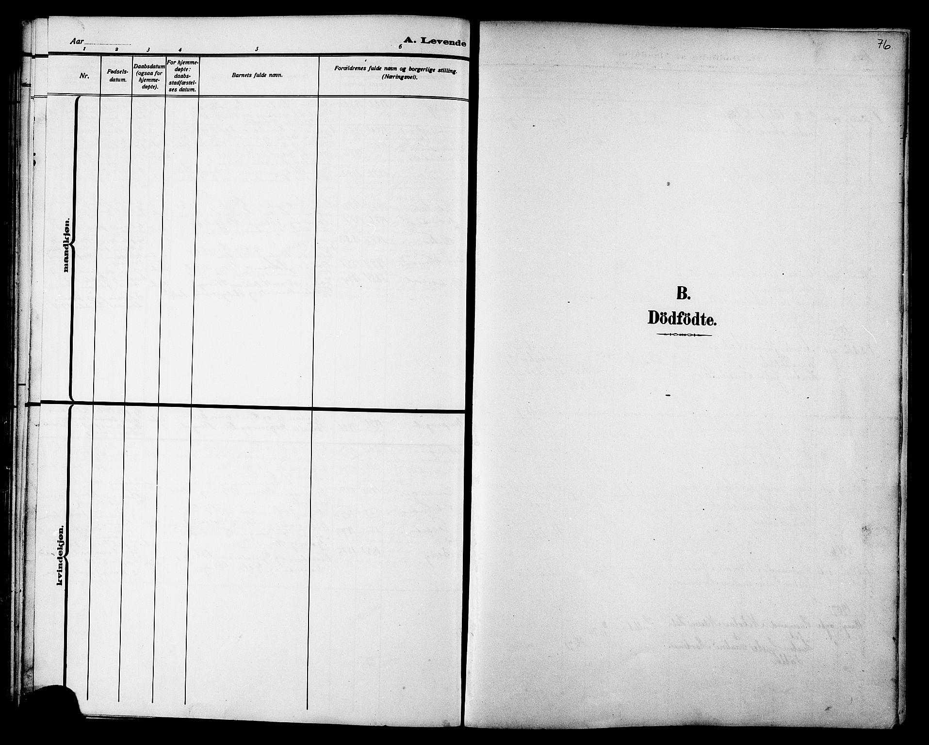 SAT, Ministerialprotokoller, klokkerbøker og fødselsregistre - Nord-Trøndelag, 733/L0327: Parish register (copy) no. 733C02, 1888-1918, p. 76