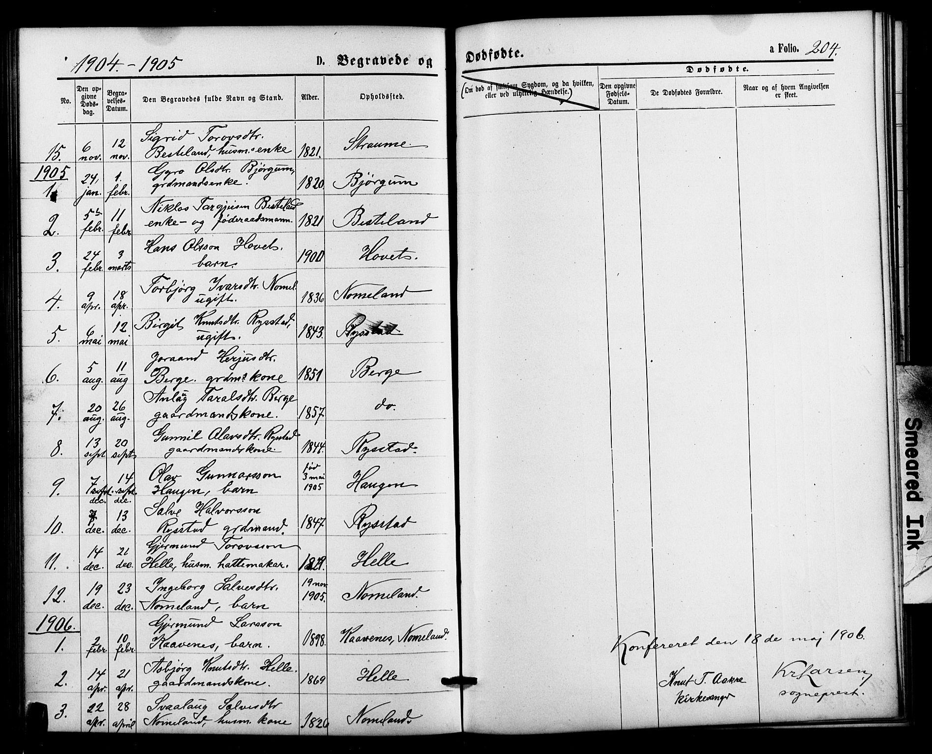 SAK, Valle sokneprestkontor, F/Fb/Fbb/L0002: Parish register (copy) no. B 2, 1875-1921, p. 204