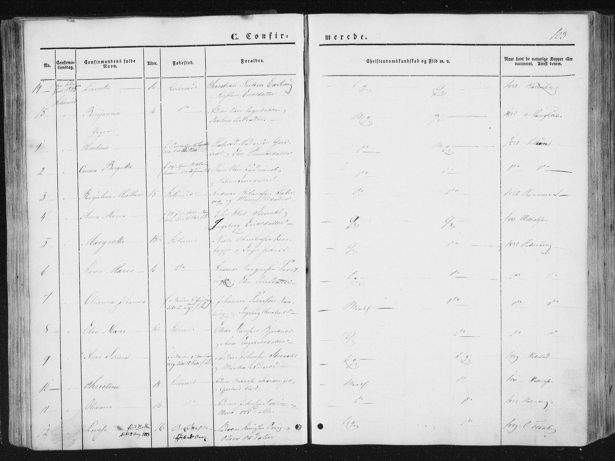 SAT, Ministerialprotokoller, klokkerbøker og fødselsregistre - Nord-Trøndelag, 780/L0640: Parish register (official) no. 780A05, 1845-1856, p. 103