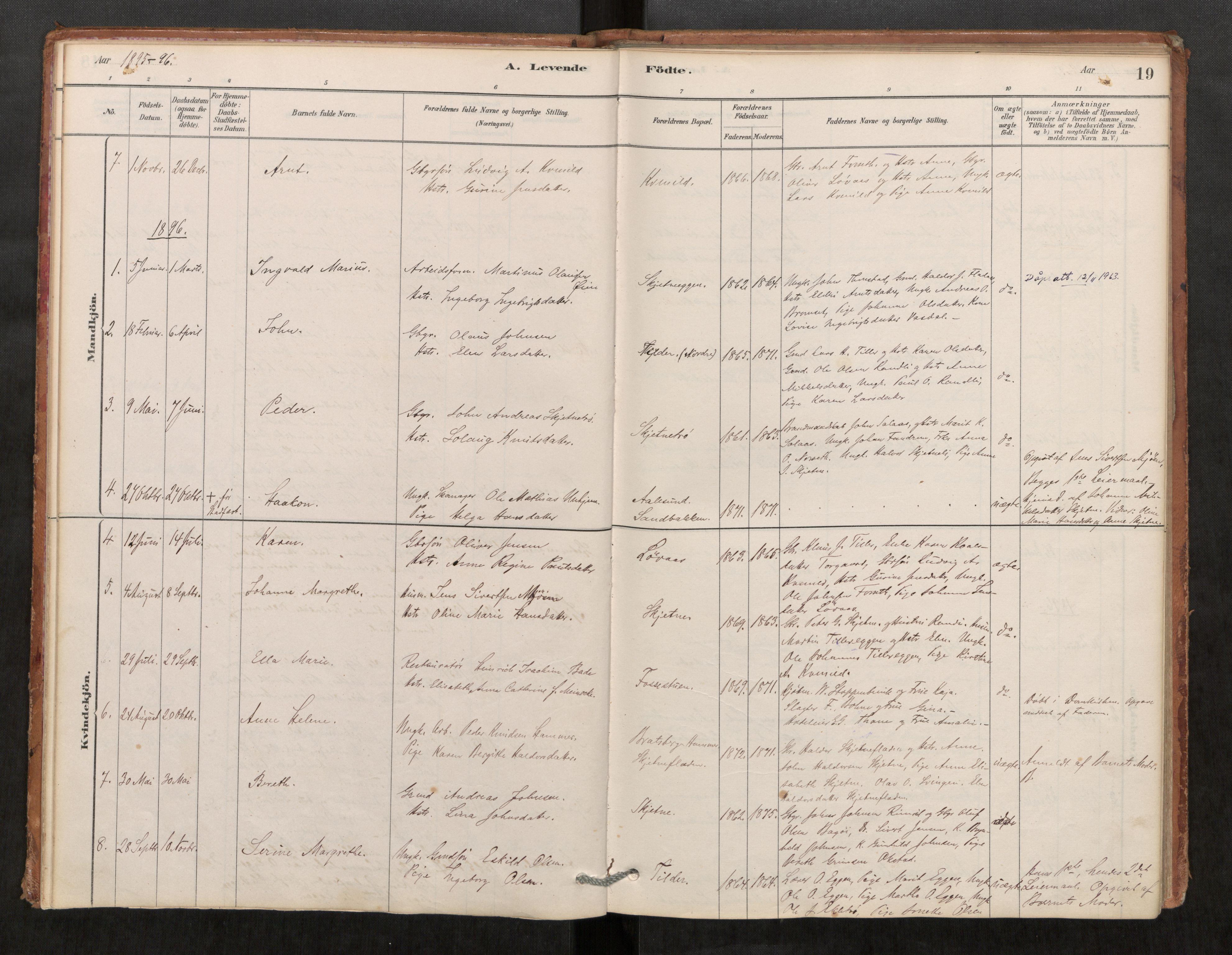 SAT, Klæbu sokneprestkontor, Parish register (official) no. 1, 1880-1900, p. 19