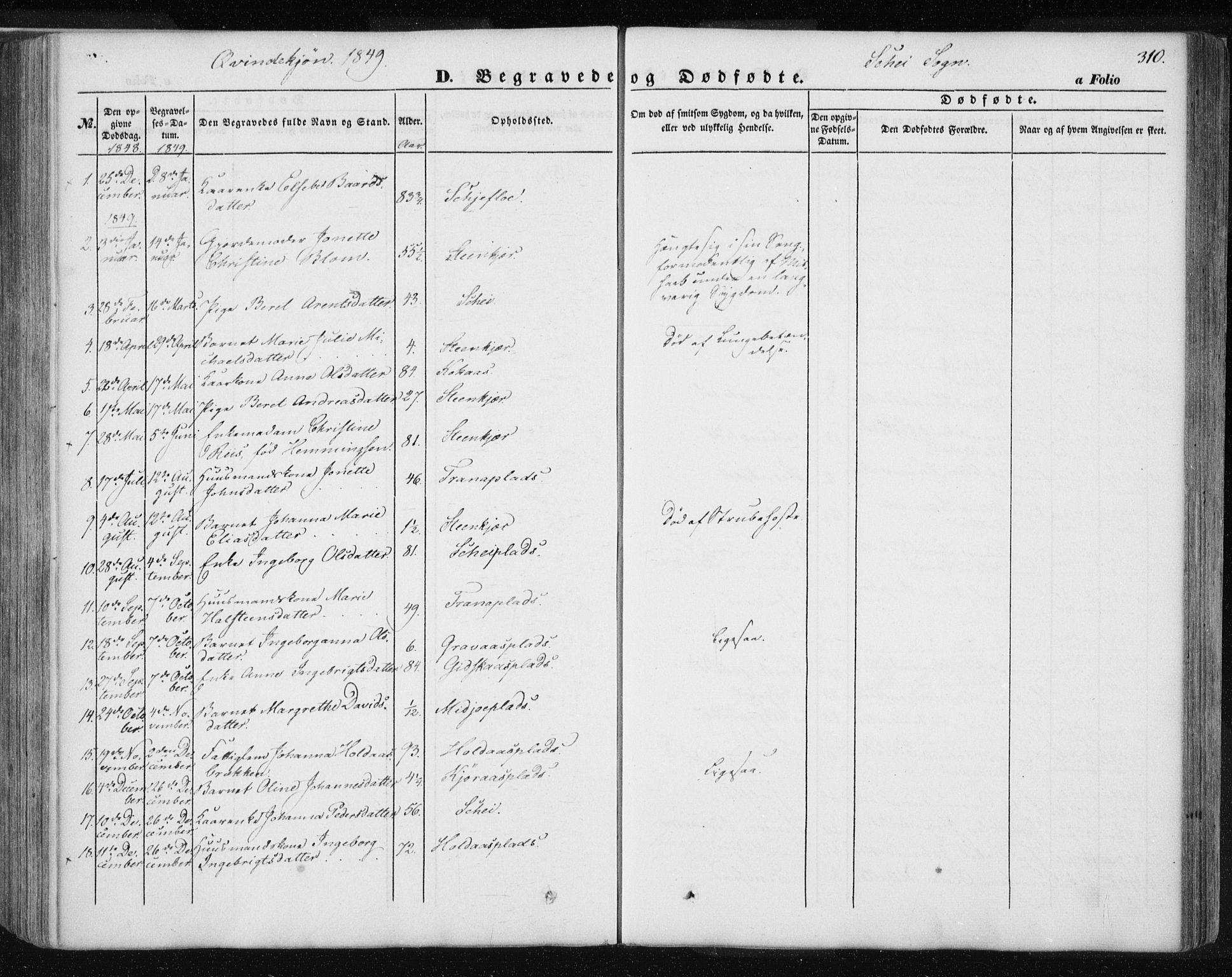 SAT, Ministerialprotokoller, klokkerbøker og fødselsregistre - Nord-Trøndelag, 735/L0342: Parish register (official) no. 735A07 /2, 1849-1862, p. 310