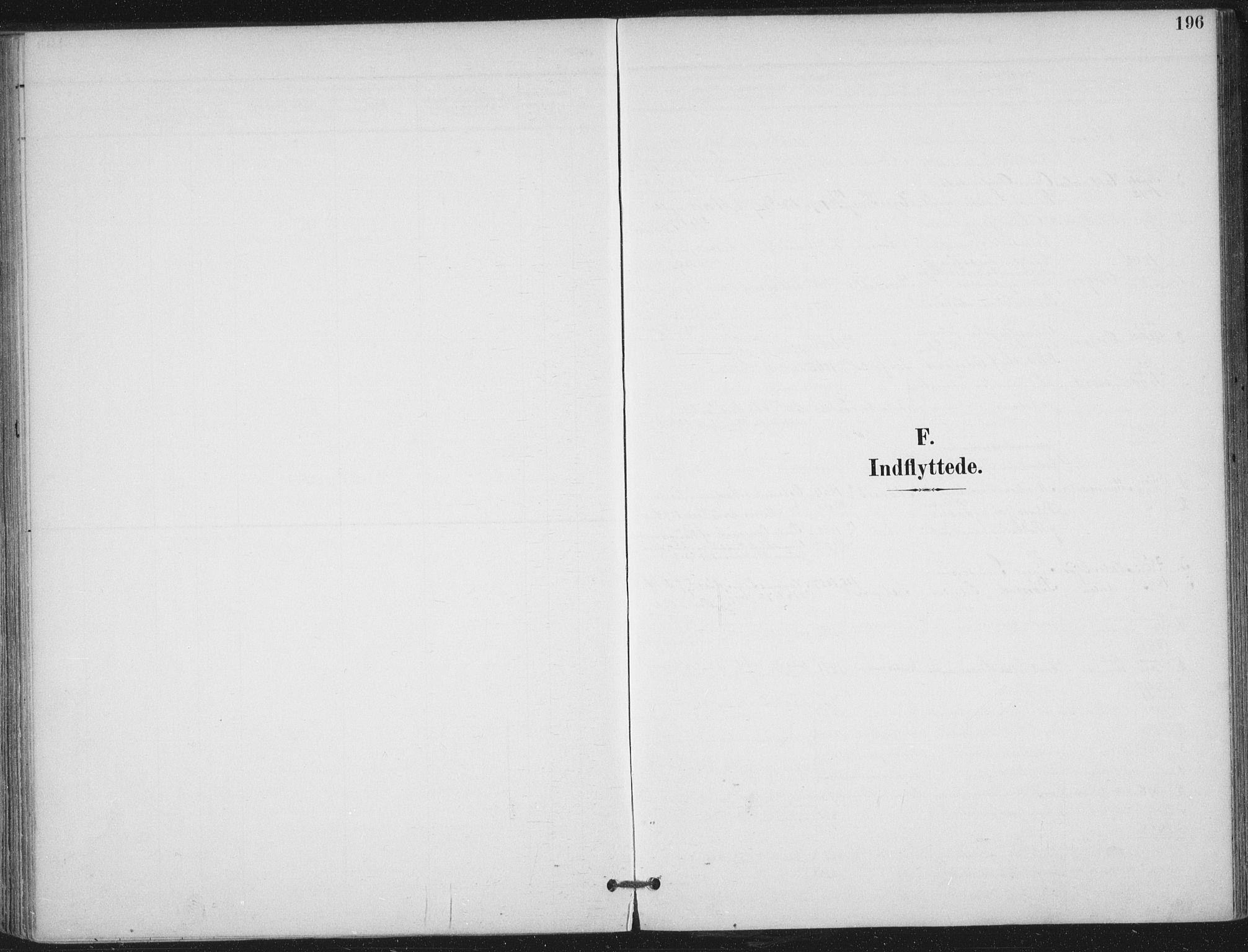 SAT, Ministerialprotokoller, klokkerbøker og fødselsregistre - Nord-Trøndelag, 703/L0031: Parish register (official) no. 703A04, 1893-1914, p. 196