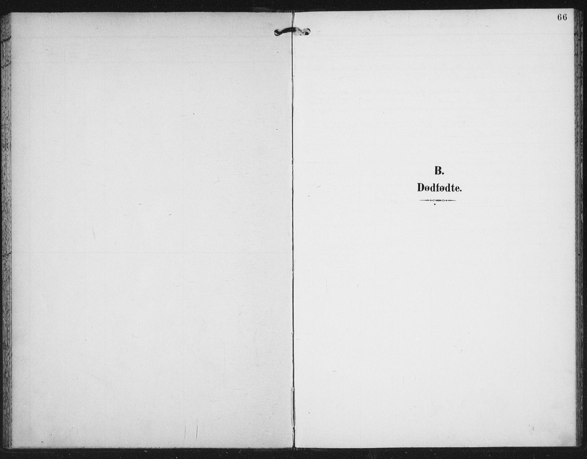 SAT, Ministerialprotokoller, klokkerbøker og fødselsregistre - Nord-Trøndelag, 702/L0024: Parish register (official) no. 702A02, 1898-1914, p. 66