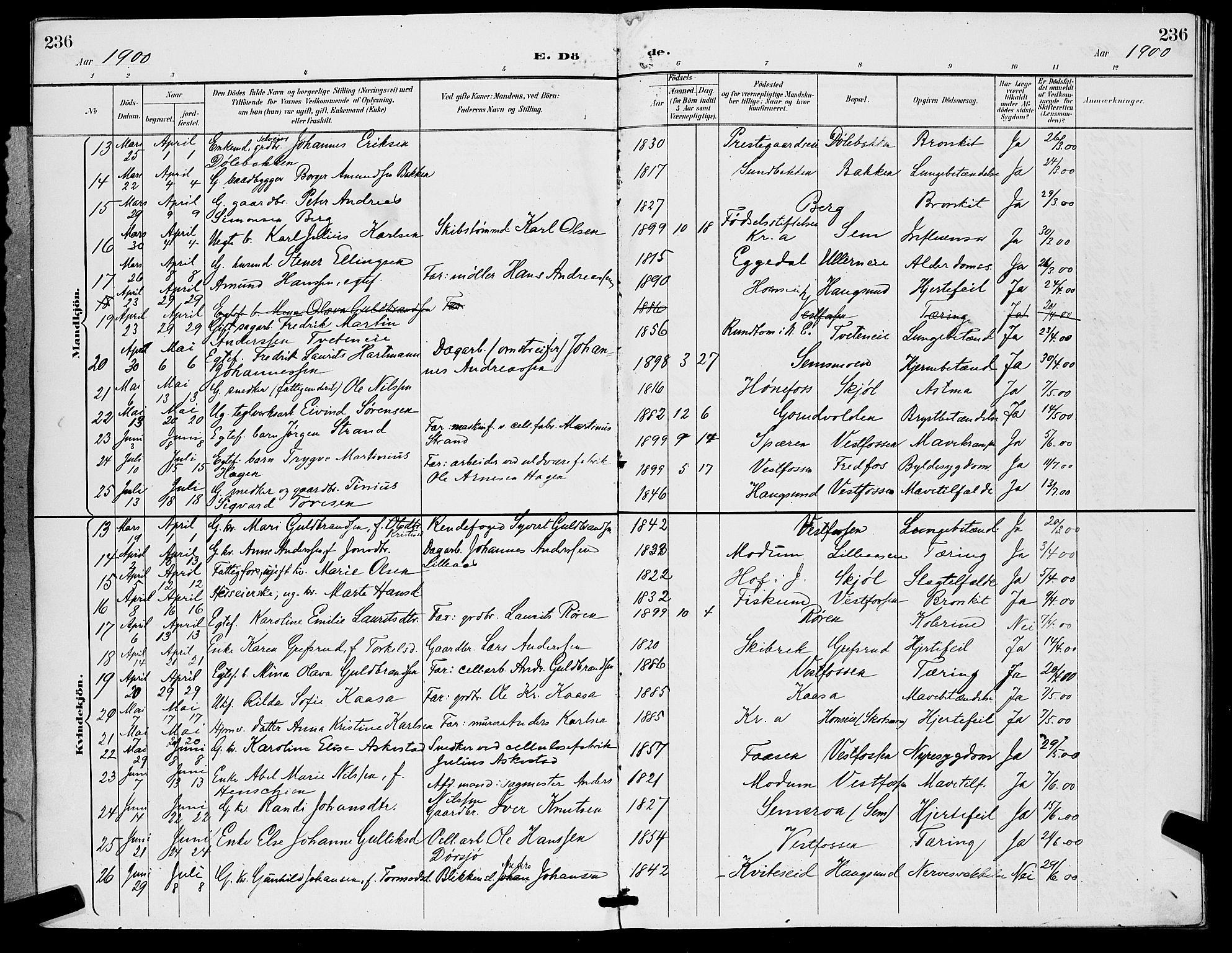 SAKO, Eiker kirkebøker, G/Ga/L0007: Parish register (copy) no. I 7, 1893-1902, p. 236