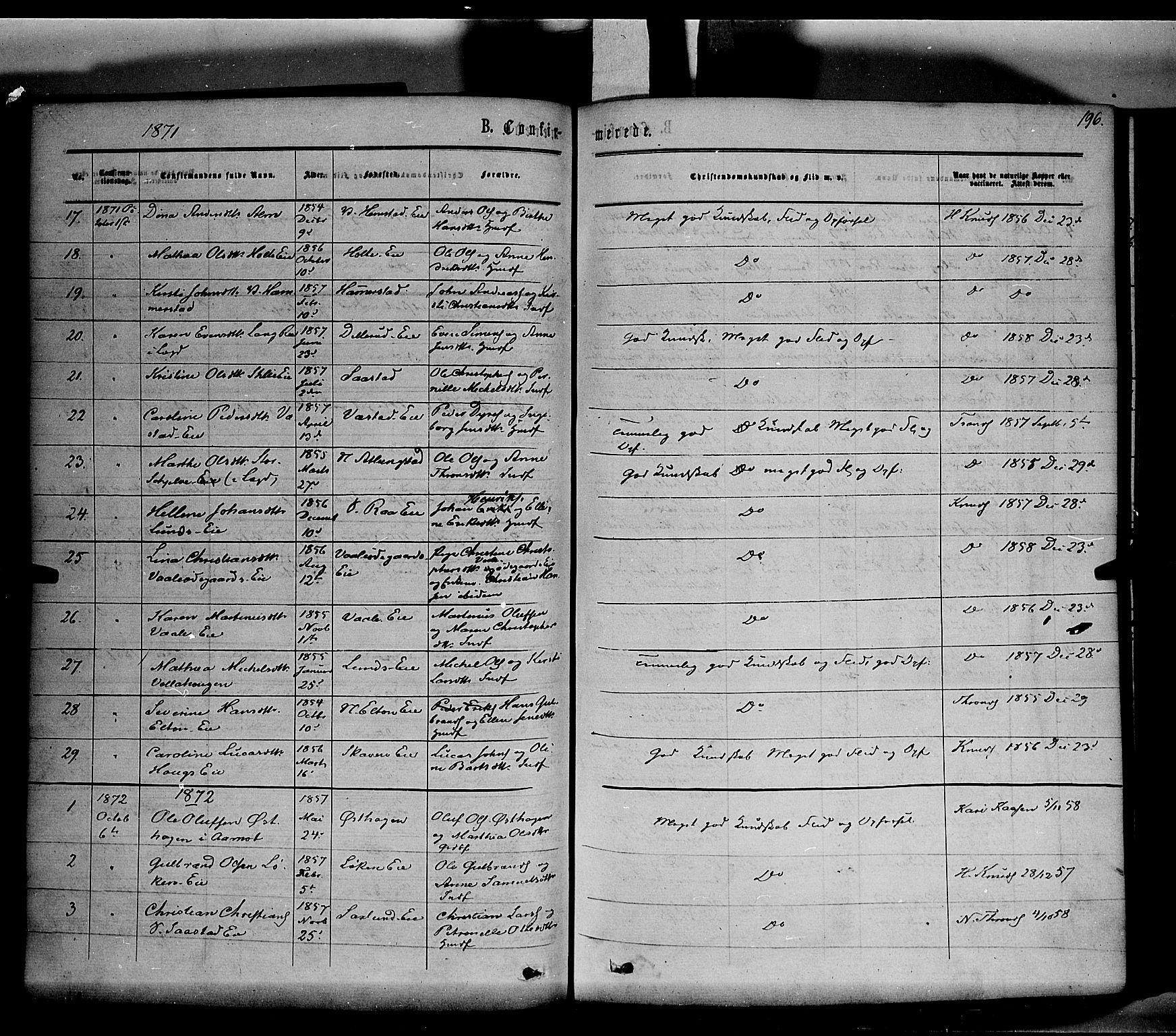 SAH, Stange prestekontor, K/L0013: Parish register (official) no. 13, 1862-1879, p. 196