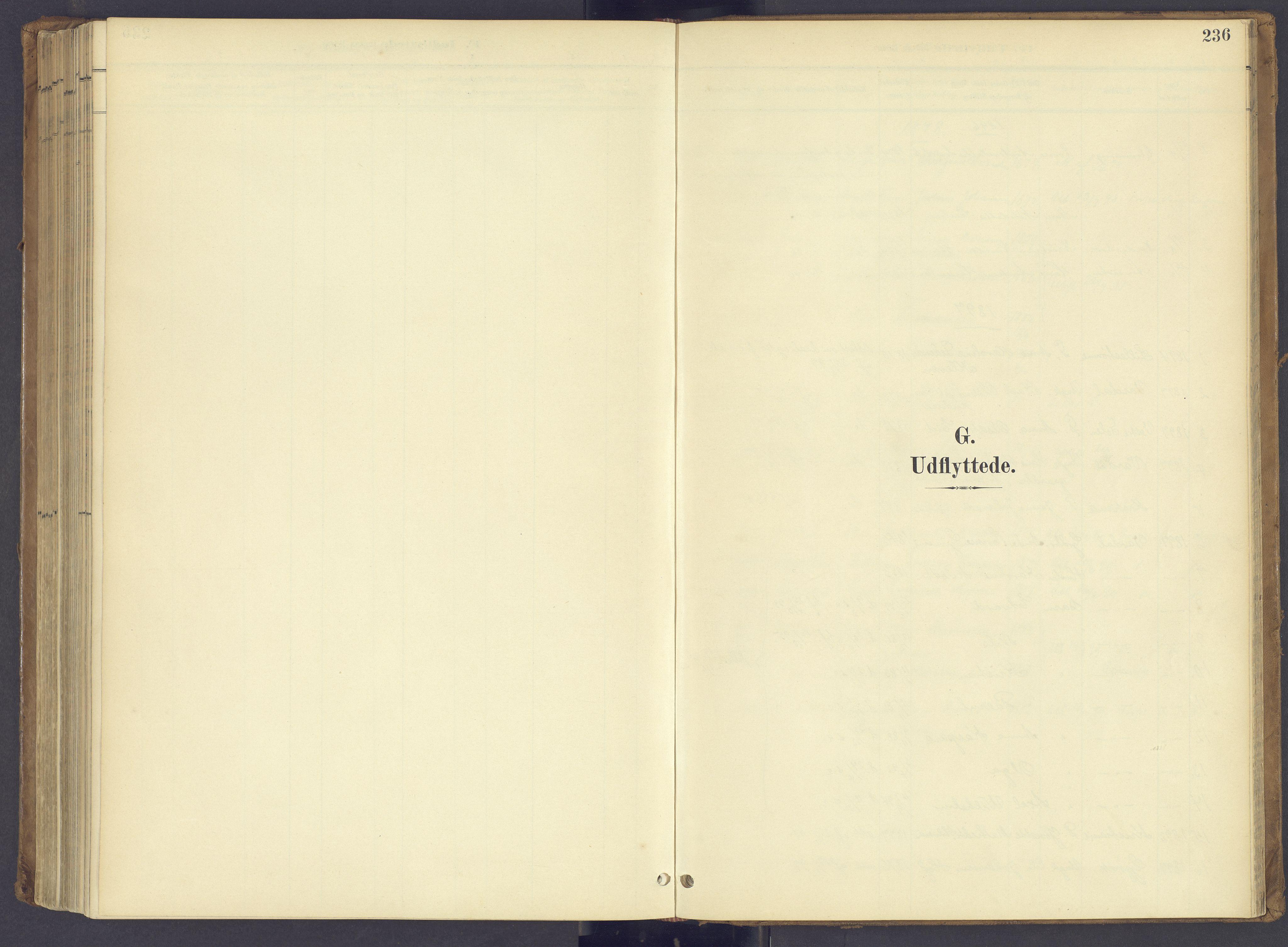 SAH, Søndre Land prestekontor, K/L0006: Parish register (official) no. 6, 1895-1904, p. 236