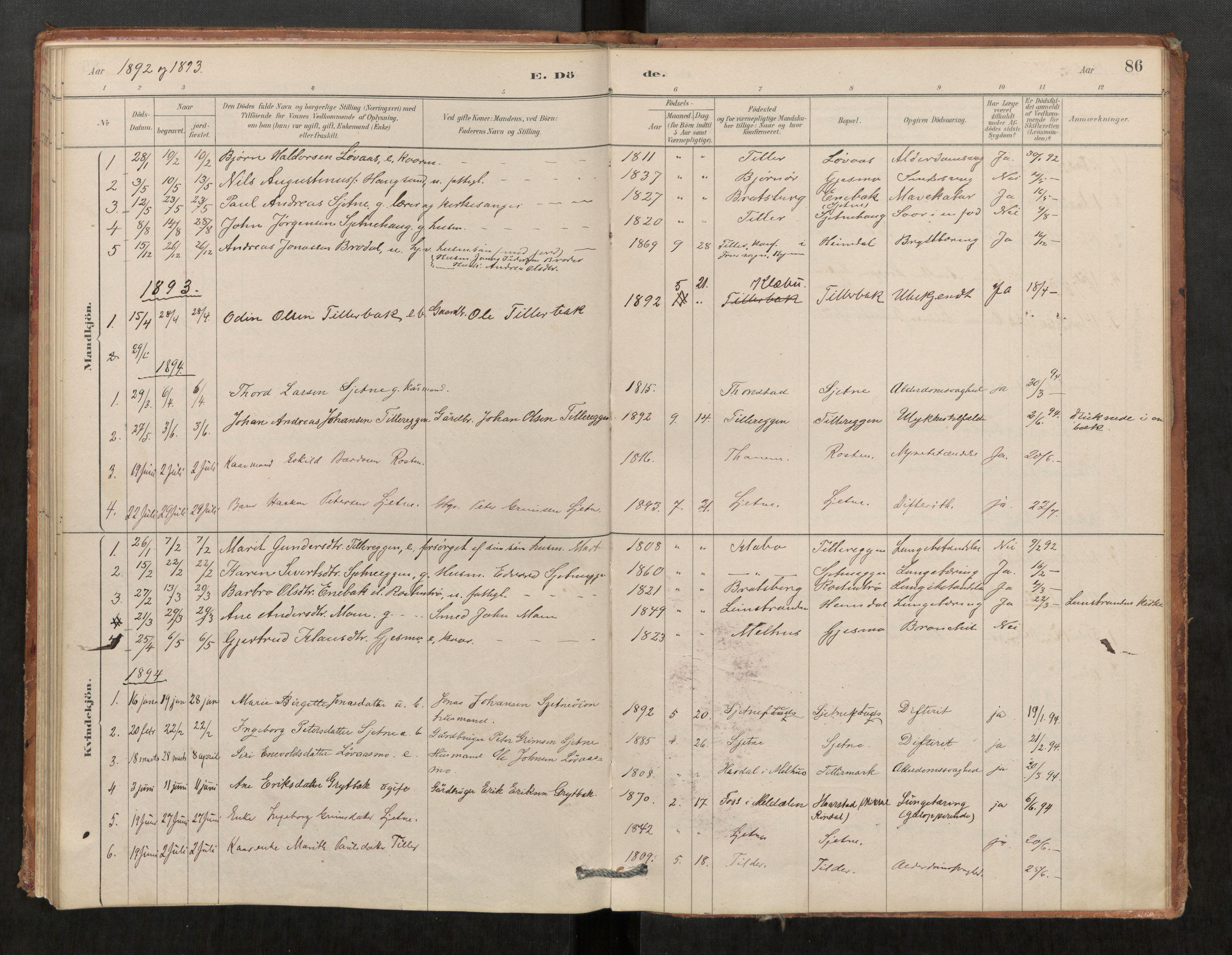 SAT, Klæbu sokneprestkontor, Parish register (official) no. 1, 1880-1900, p. 86