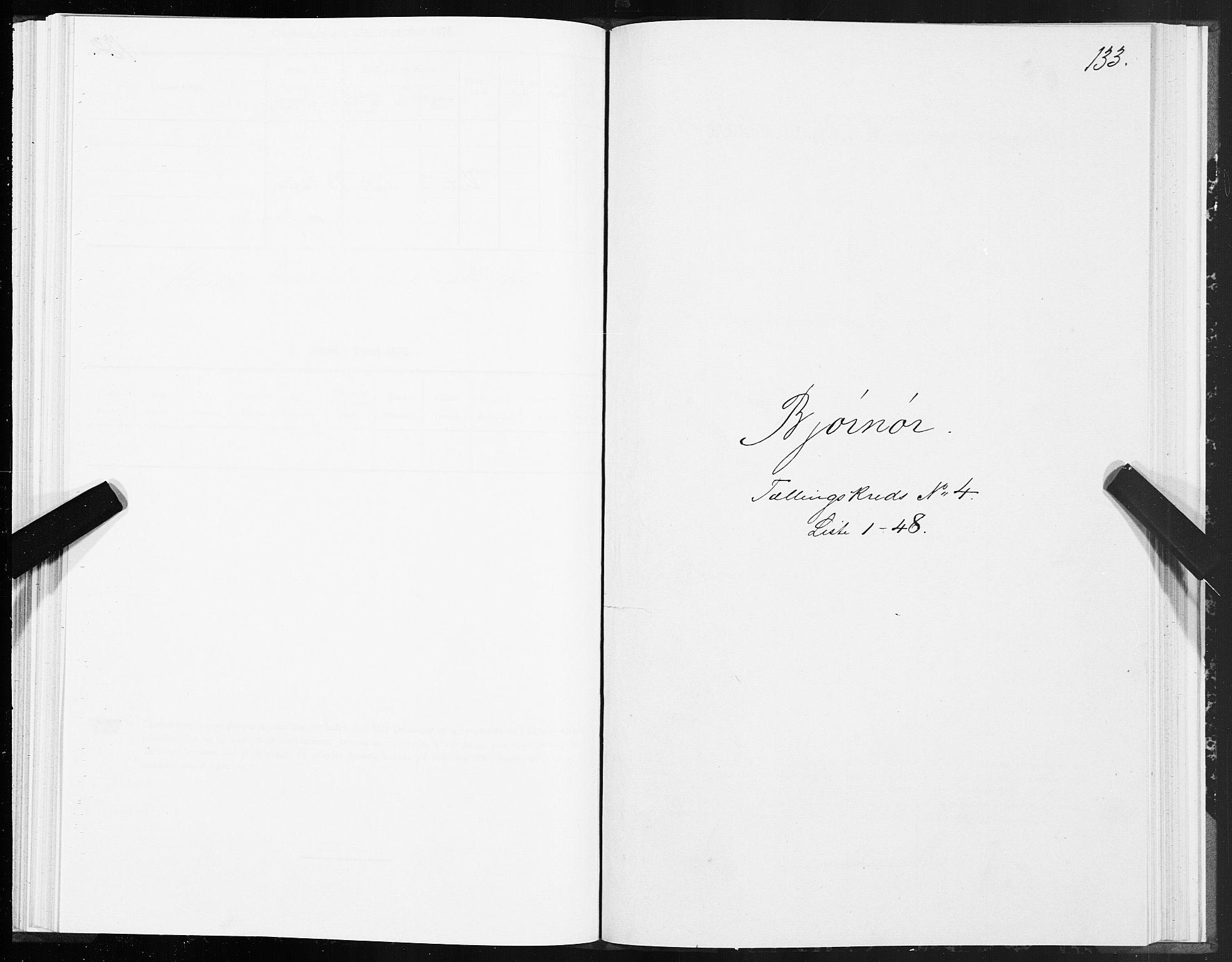 SAT, 1875 census for 1632P Bjørnør, 1875, p. 2133