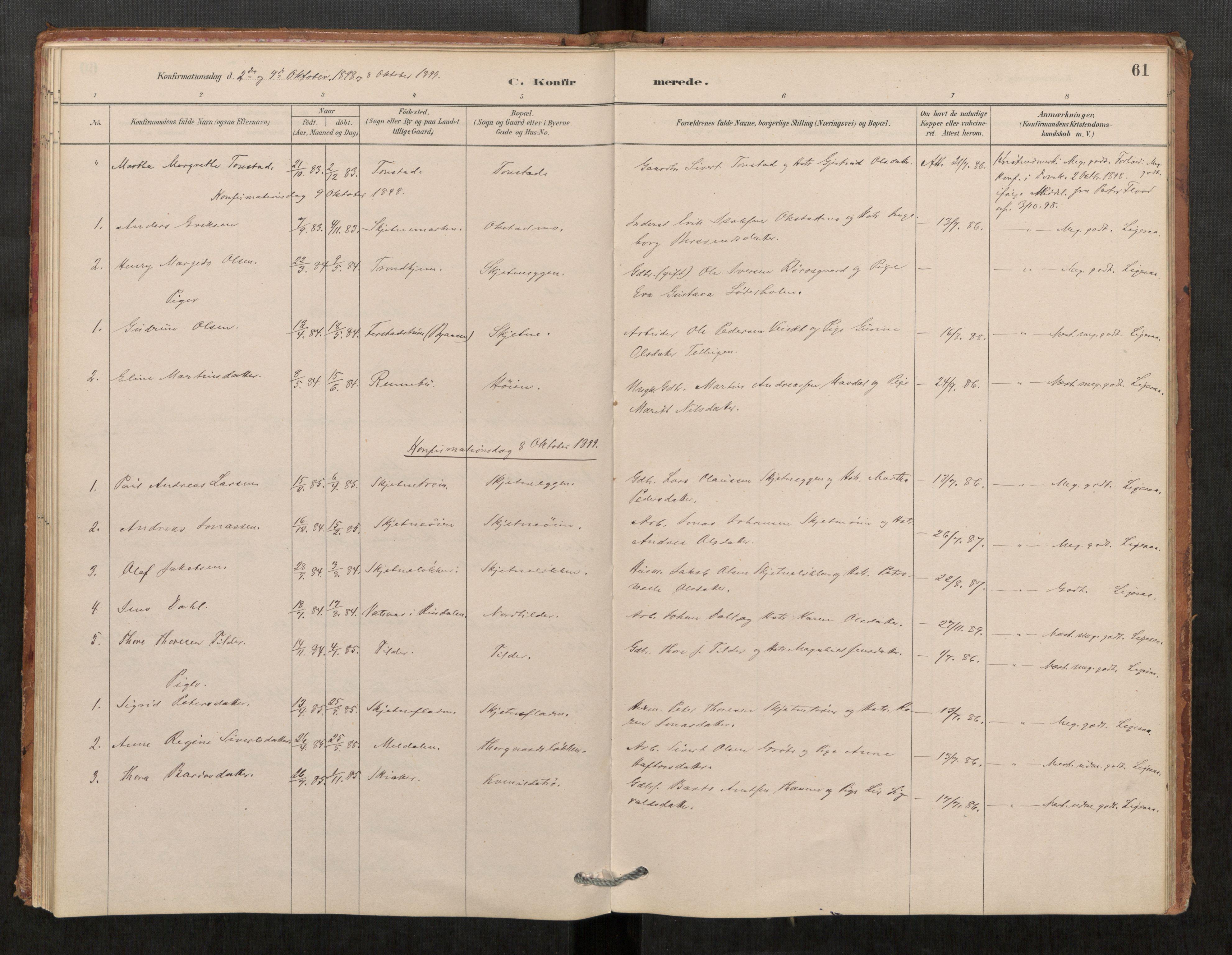 SAT, Klæbu sokneprestkontor, Parish register (official) no. 1, 1880-1900, p. 61