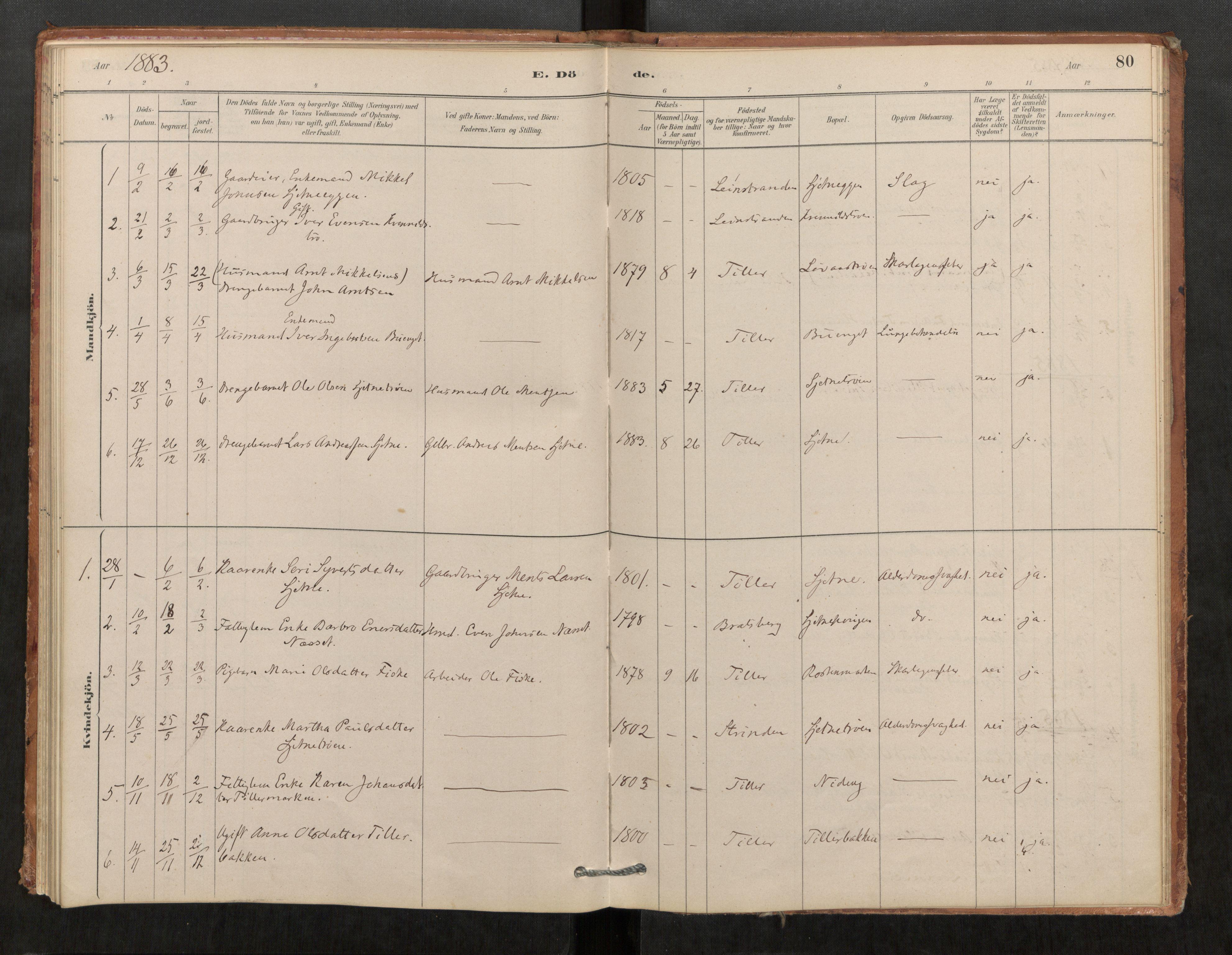 SAT, Klæbu sokneprestkontor, Parish register (official) no. 1, 1880-1900, p. 80