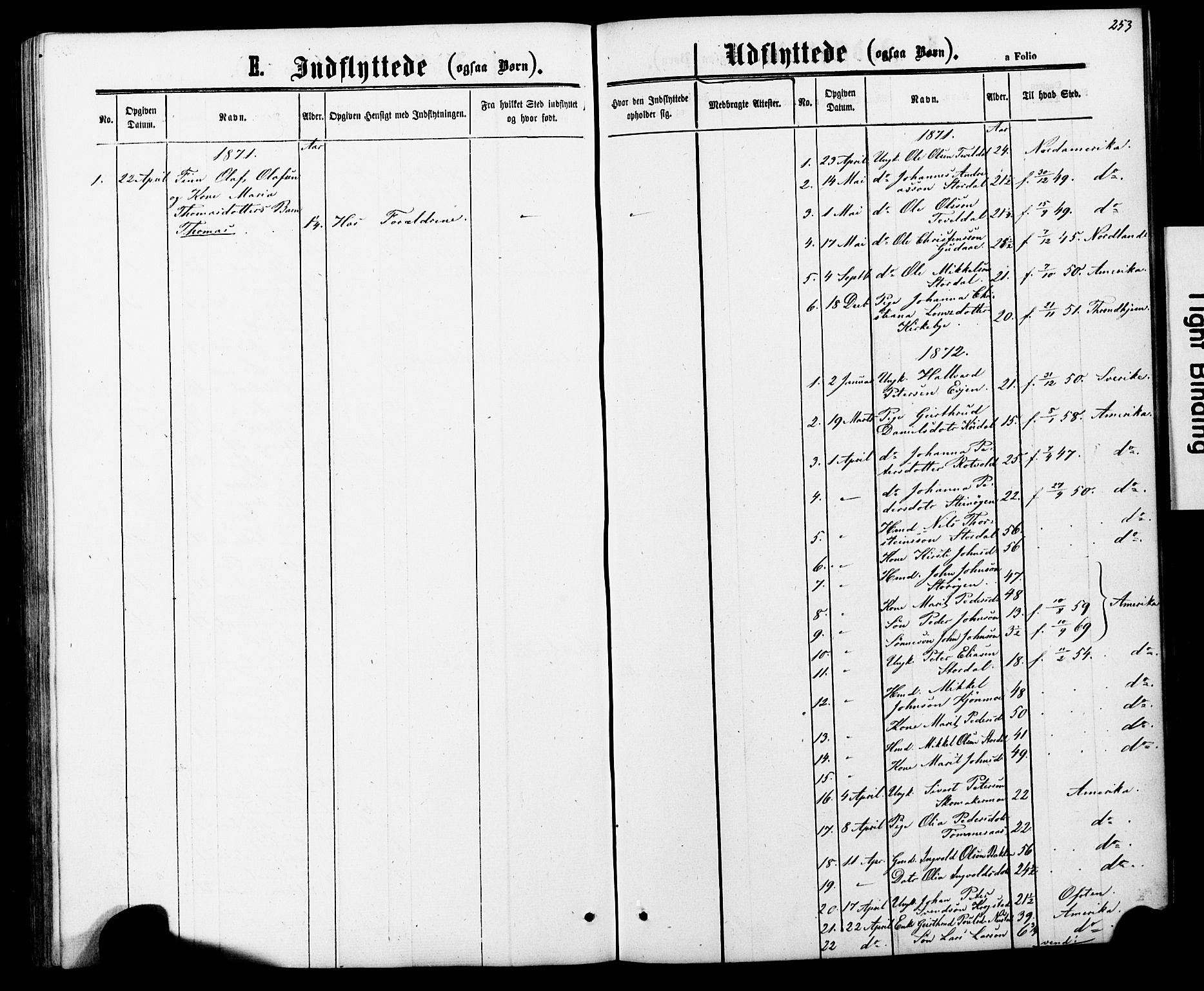 SAT, Ministerialprotokoller, klokkerbøker og fødselsregistre - Nord-Trøndelag, 706/L0049: Parish register (copy) no. 706C01, 1864-1895, p. 253