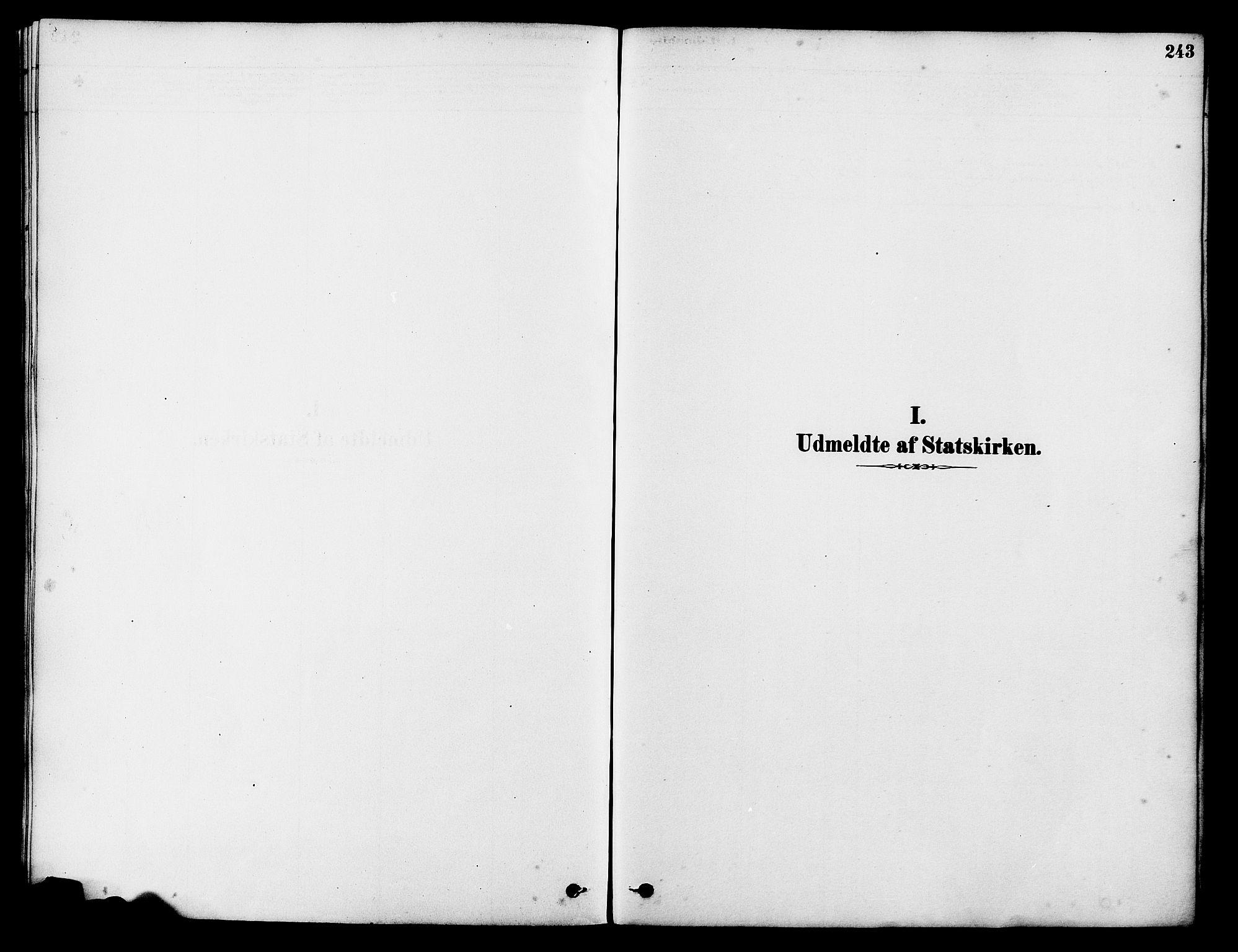 SAST, Tysvær sokneprestkontor, H/Ha/Haa/L0006: Parish register (official) no. A 6, 1878-1896, p. 243