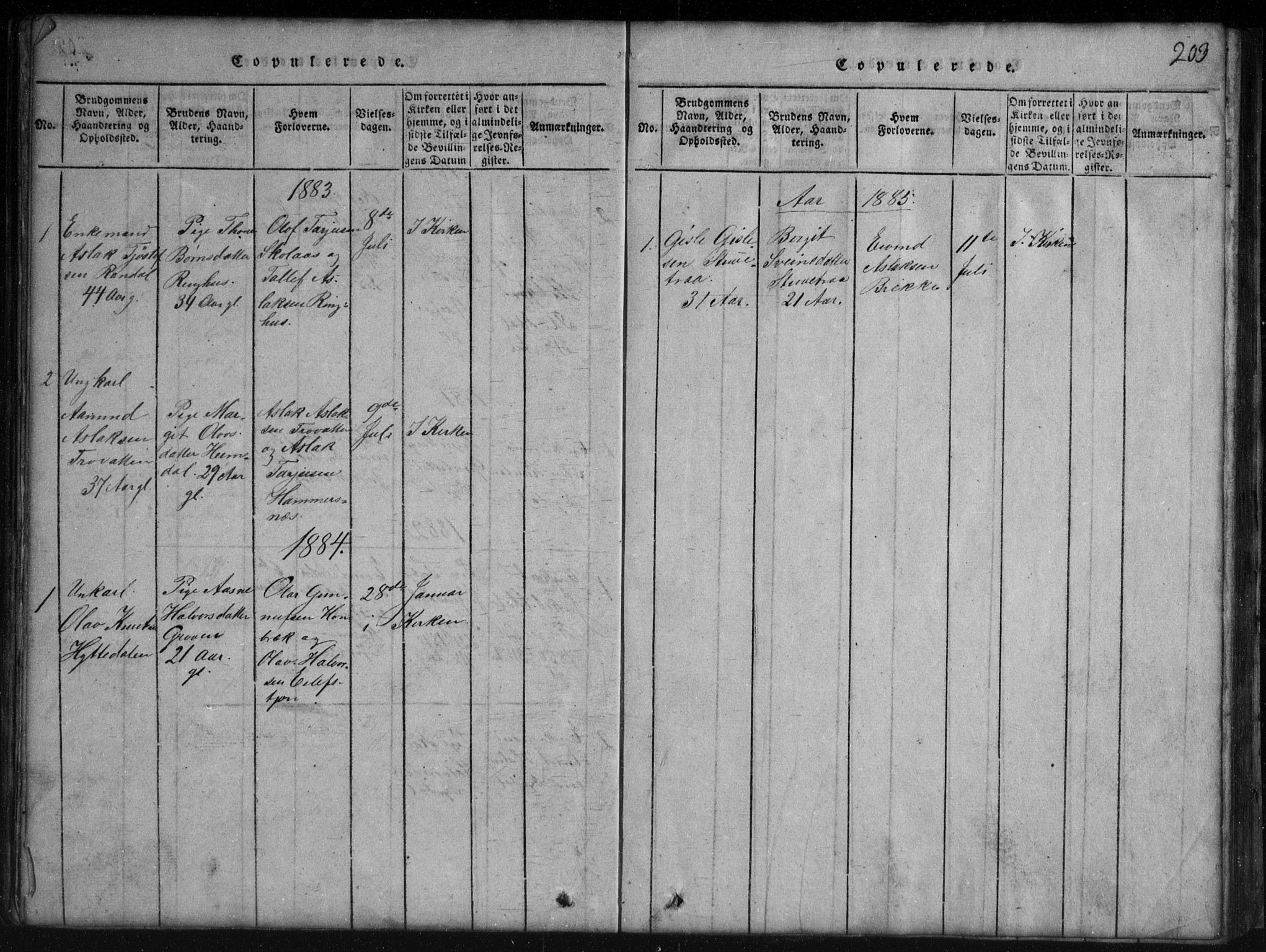 SAKO, Rauland kirkebøker, G/Gb/L0001: Parish register (copy) no. II 1, 1815-1886, p. 203