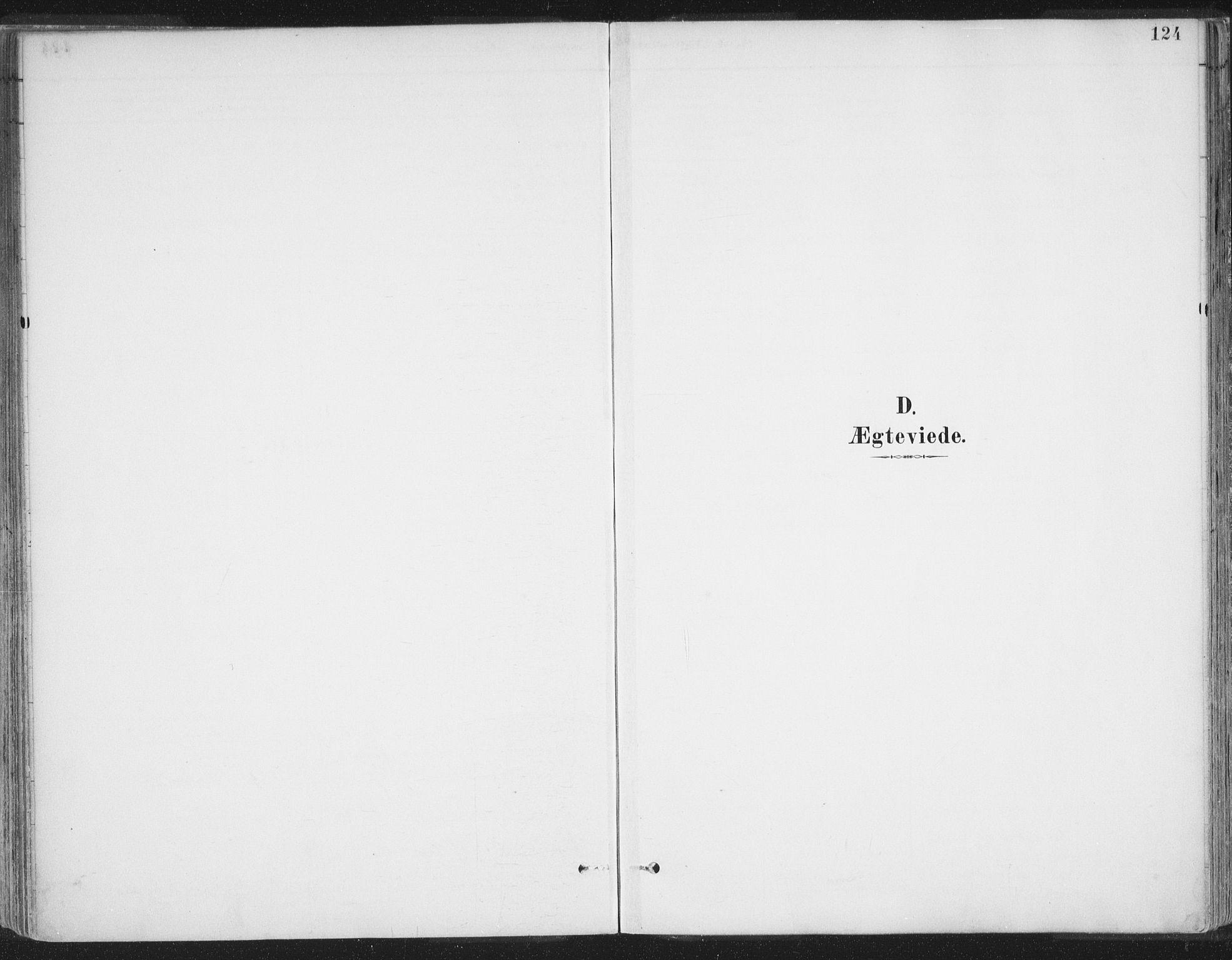 SATØ, Balsfjord sokneprestembete, Parish register (official) no. 7, 1887-1909, p. 124