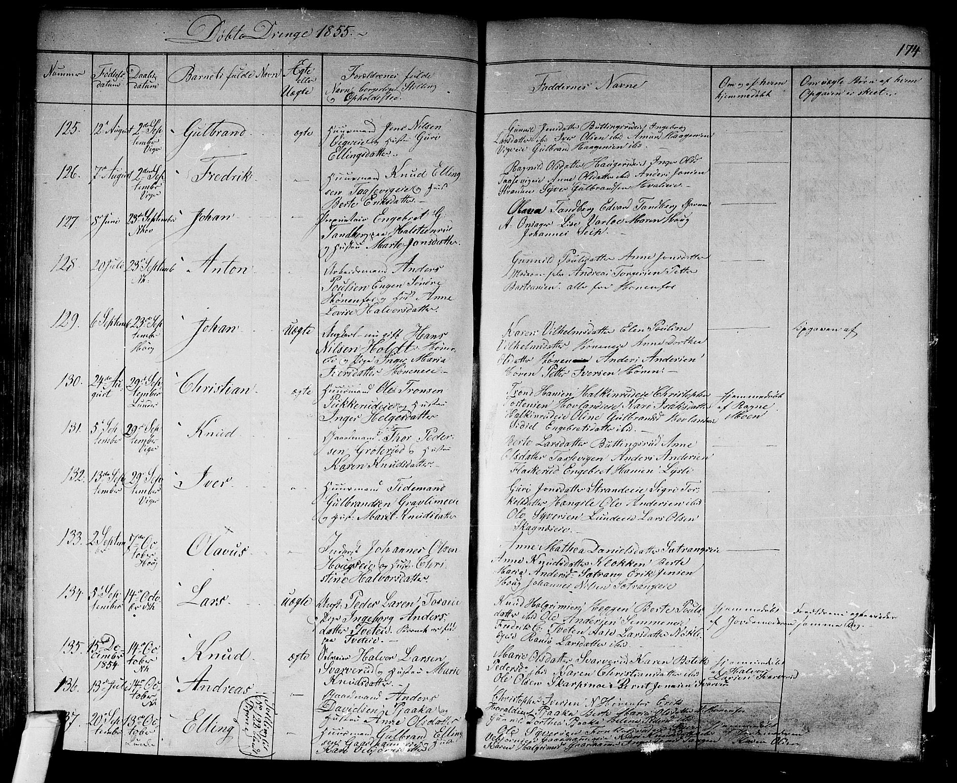 SAKO, Norderhov kirkebøker, F/Fa/L0011: Parish register (official) no. 11, 1847-1856, p. 174