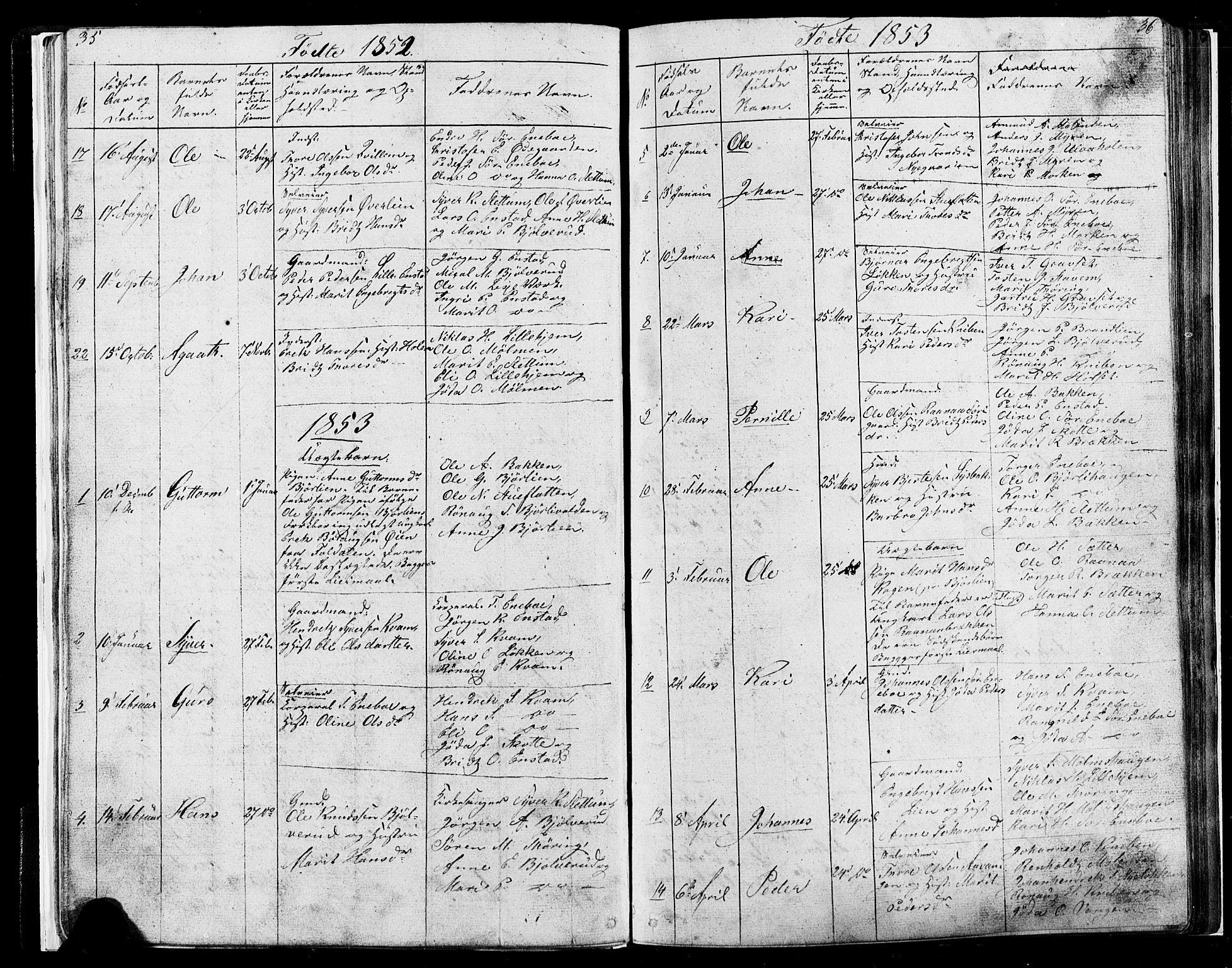 SAH, Lesja prestekontor, Parish register (copy) no. 4, 1842-1871, p. 35-36