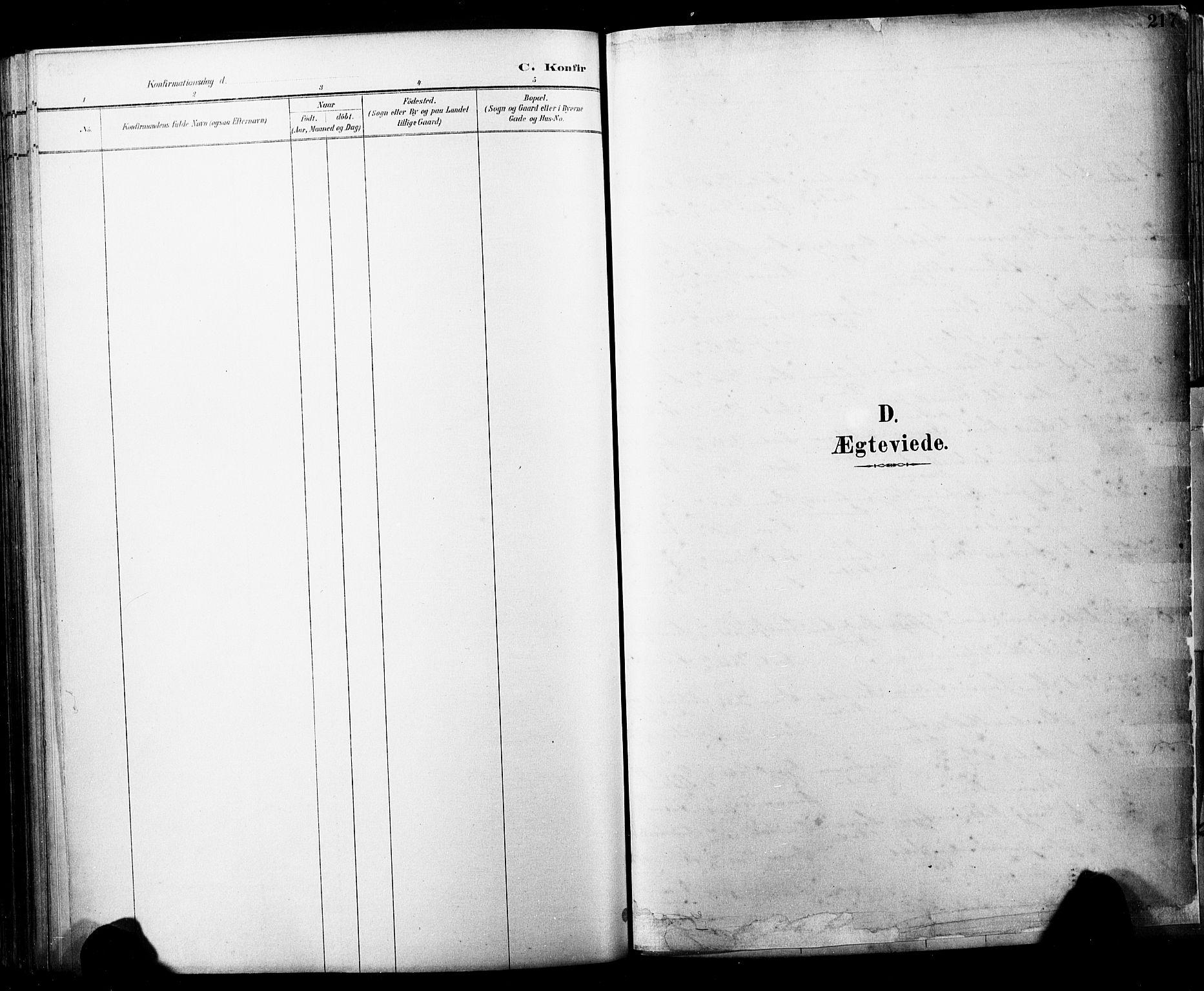 SAKO, Horten kirkebøker, F/Fa/L0004: Parish register (official) no. 4, 1888-1895, p. 217