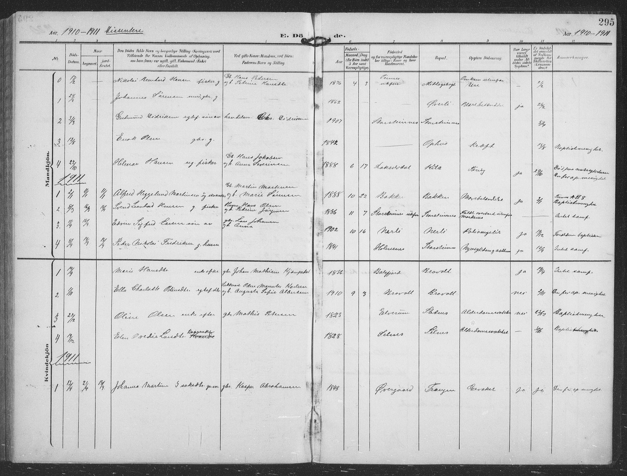 SATØ, Balsfjord sokneprestembete, Parish register (copy) no. 9, 1906-1920, p. 295