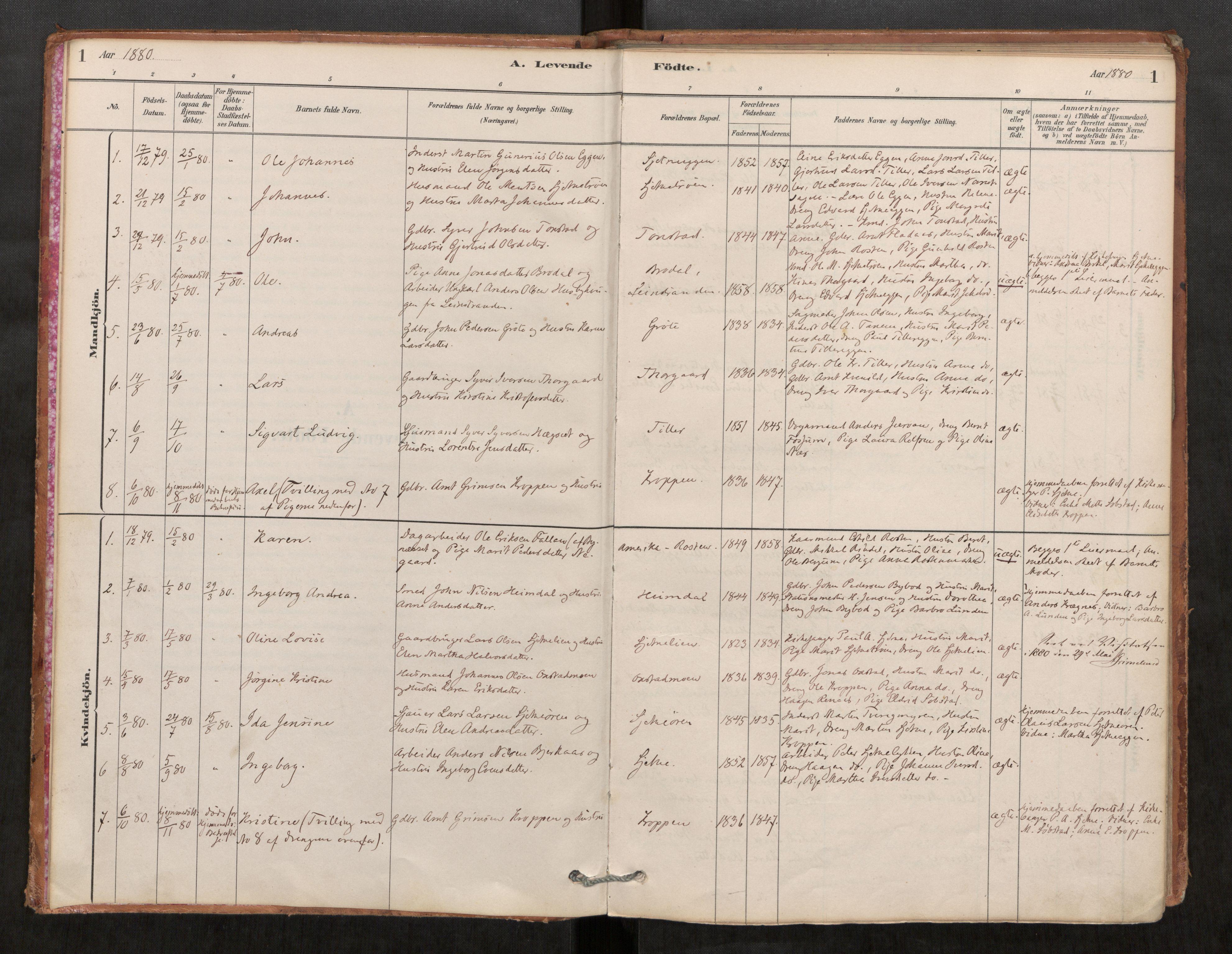 SAT, Klæbu sokneprestkontor, Parish register (official) no. 1, 1880-1900, p. 1