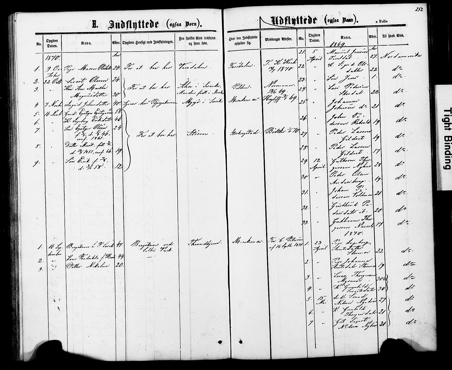 SAT, Ministerialprotokoller, klokkerbøker og fødselsregistre - Nord-Trøndelag, 706/L0049: Parish register (copy) no. 706C01, 1864-1895, p. 252
