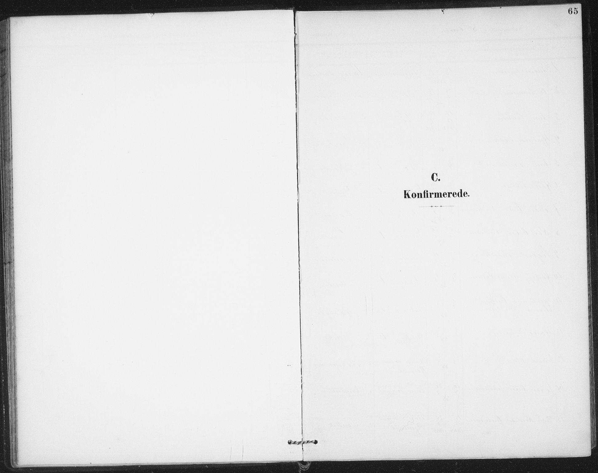 SAO, Varteig prestekontor Kirkebøker, F/Fa/L0003: Parish register (official) no. 3, 1899-1919, p. 65