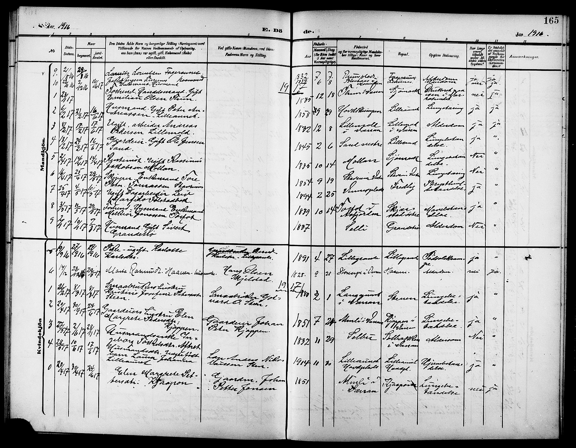 SAT, Ministerialprotokoller, klokkerbøker og fødselsregistre - Nord-Trøndelag, 744/L0424: Parish register (copy) no. 744C03, 1906-1923, p. 165
