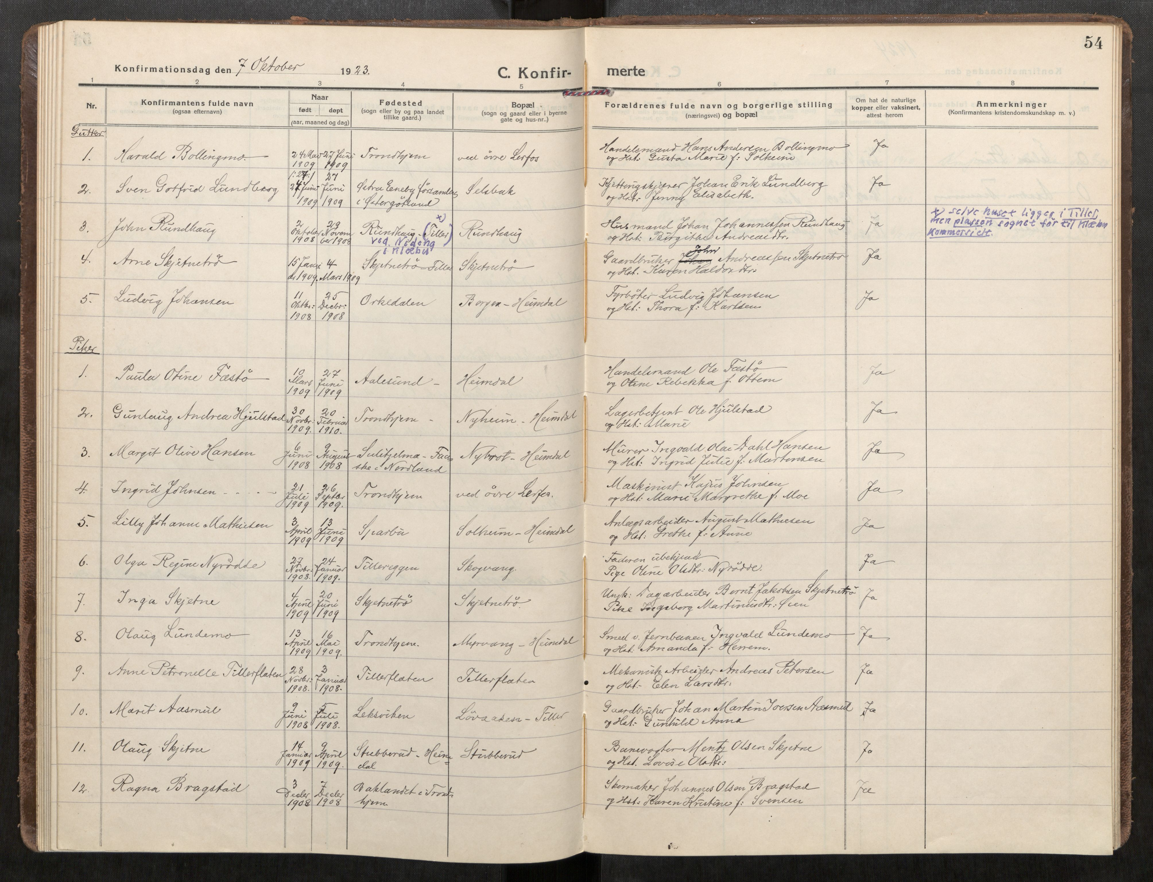 SAT, Klæbu sokneprestkontor, Parish register (official) no. 3, 1917-1924, p. 54